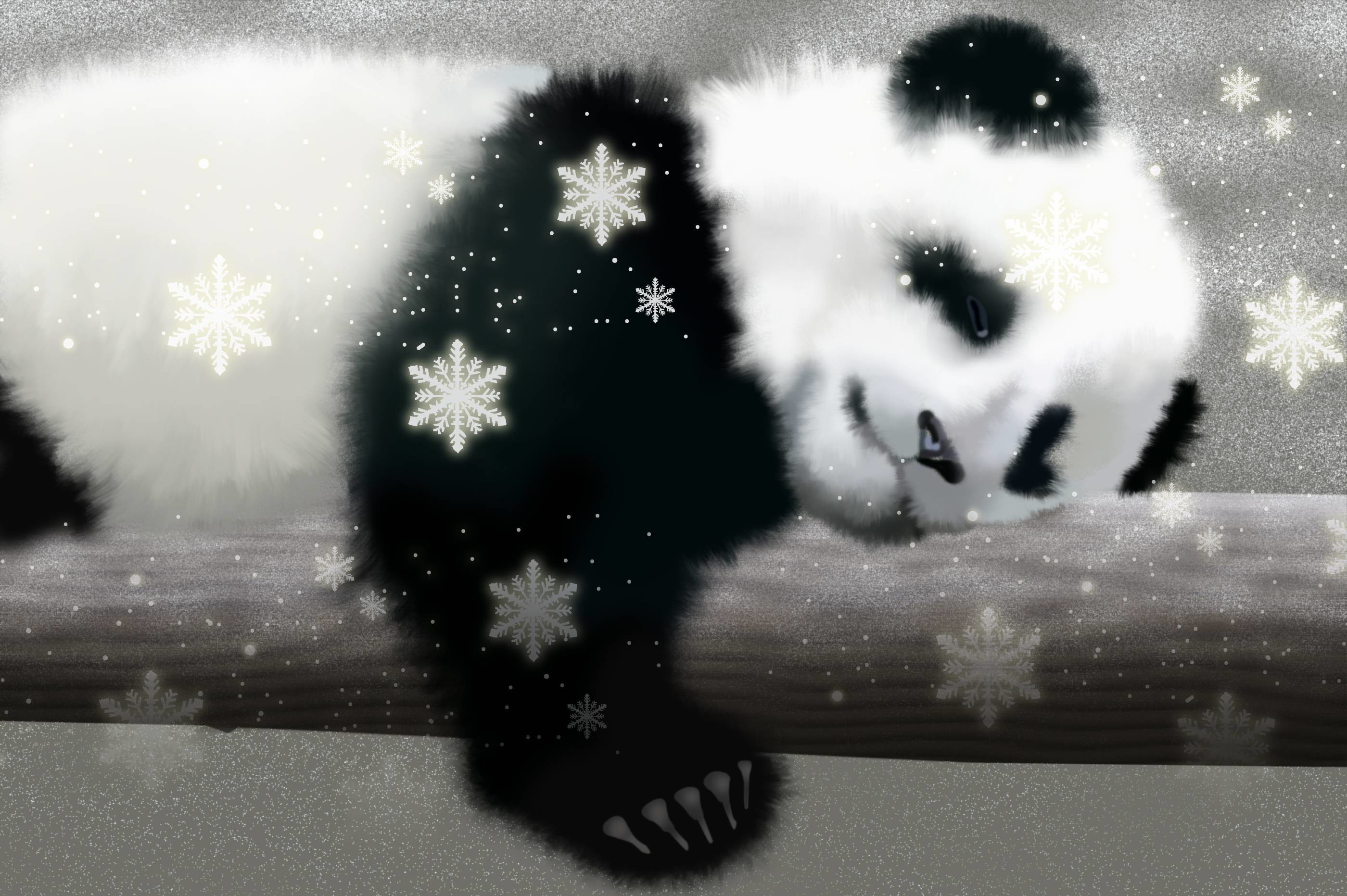 Wallpapers For > Cute Baby Panda Cartoon Wallpaper