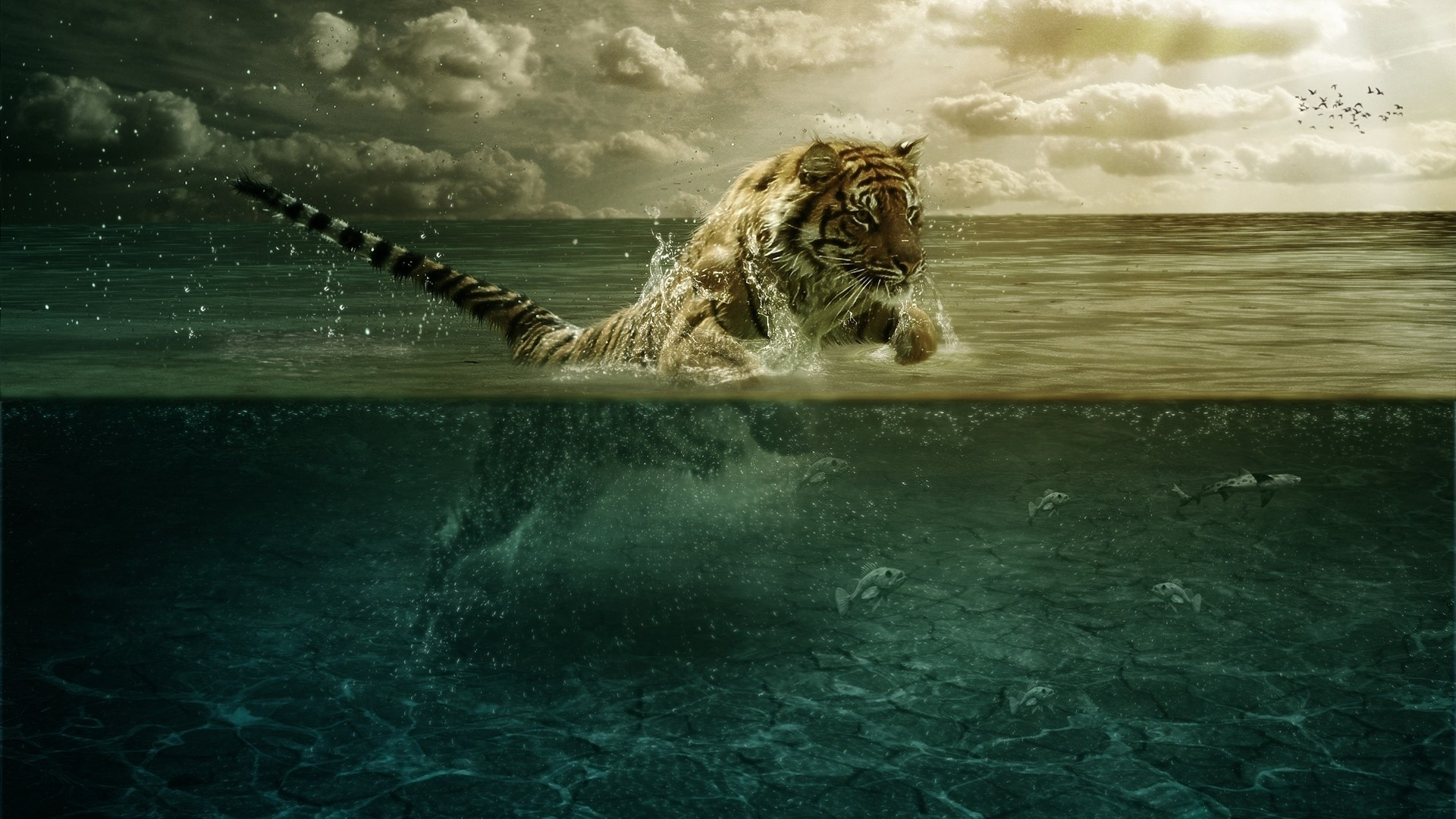 Preview wallpaper tiger, jump, sea, underwater, hunting 1920×1080