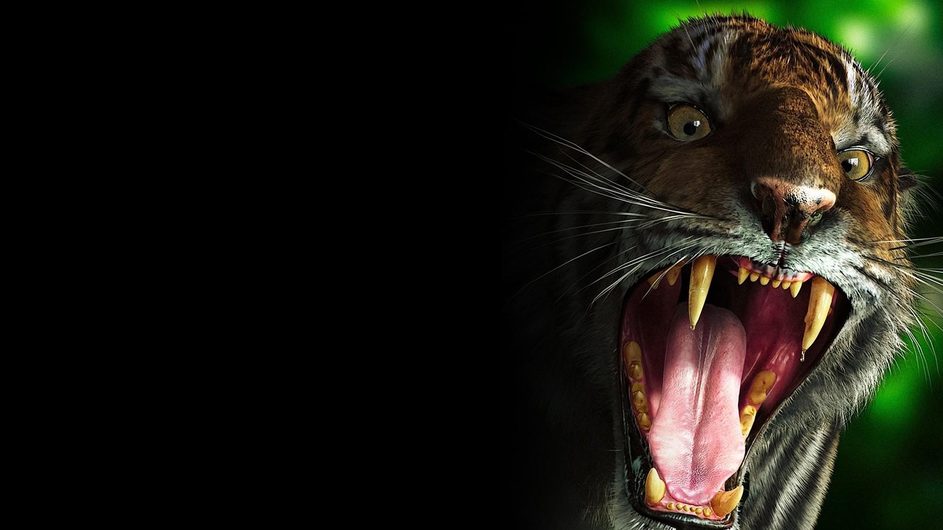tiger, teeth, scary