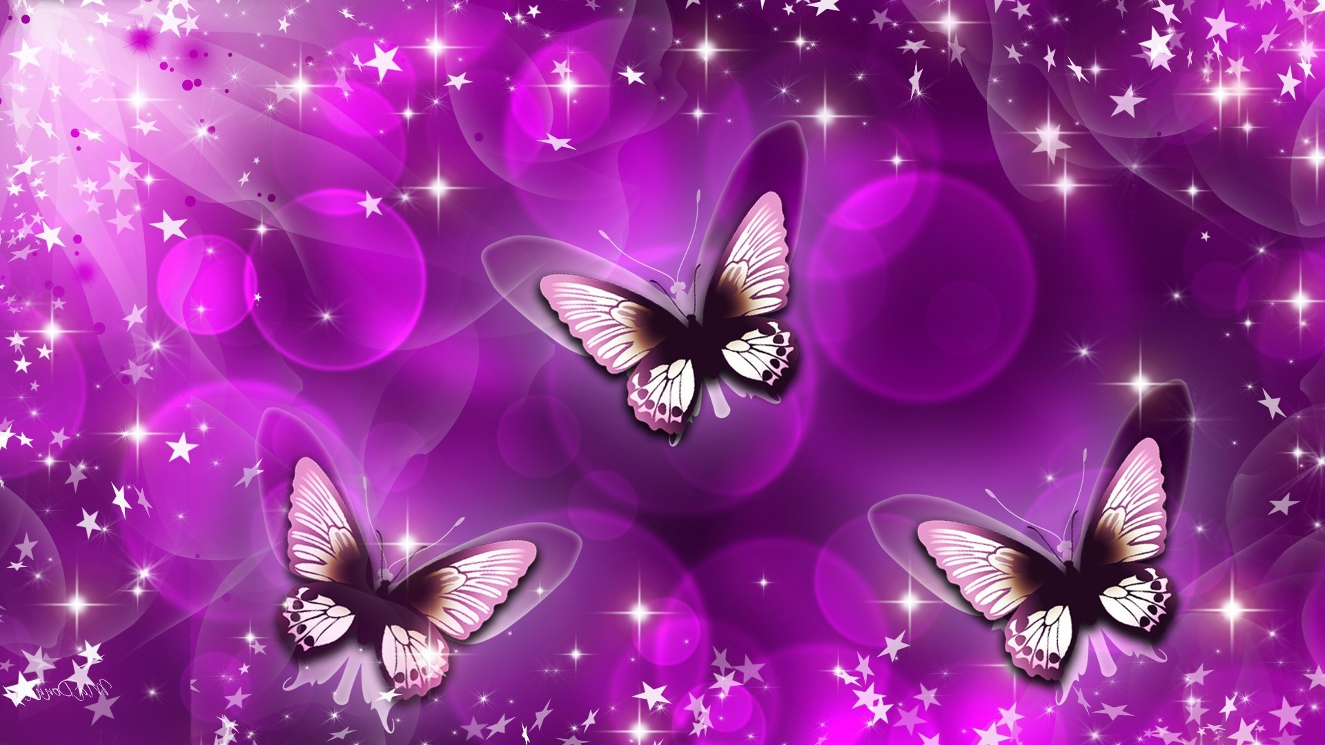 3d hd wallpaper com animated butterfly wallpaper animated butterfly .