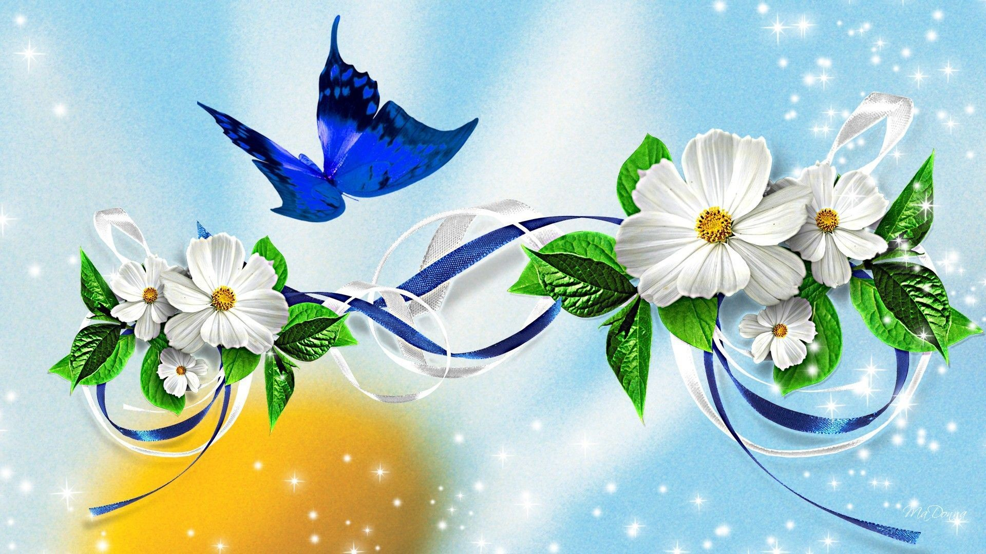 Free butterfly wallpapers download ~ Toptenpack.com