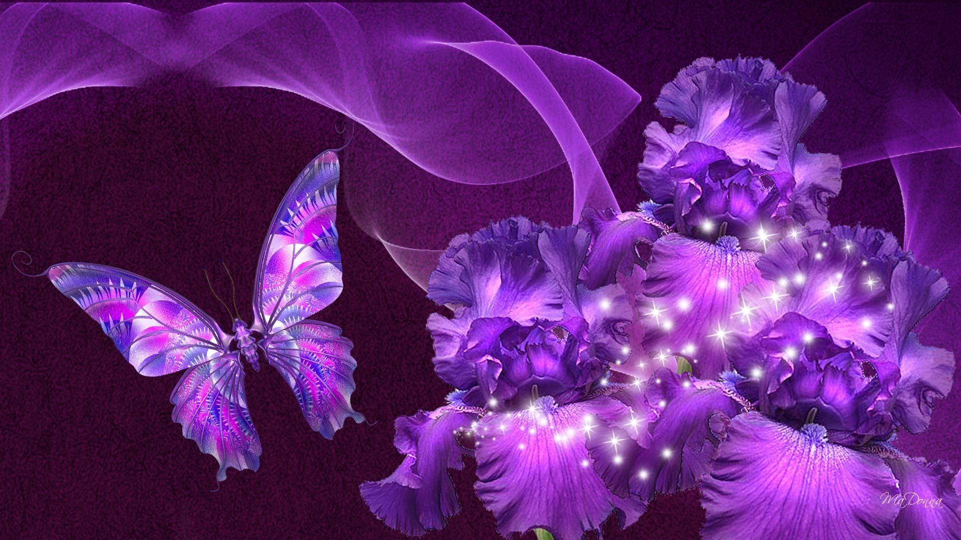 Animal Wallpaper: Purple Butterfly Wallpaper Desktop with High Resolution