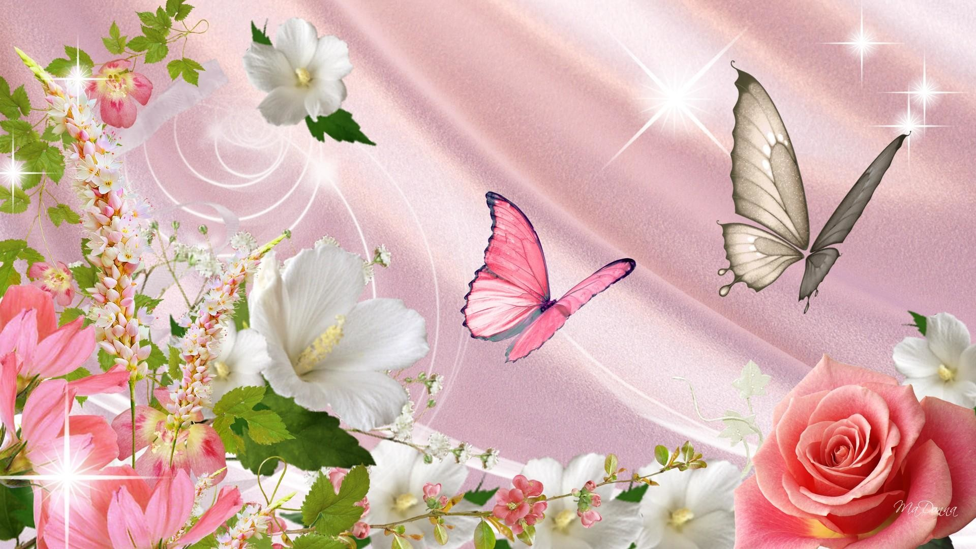 Wallpaper Butterflies and Flowers – WallpaperSafari