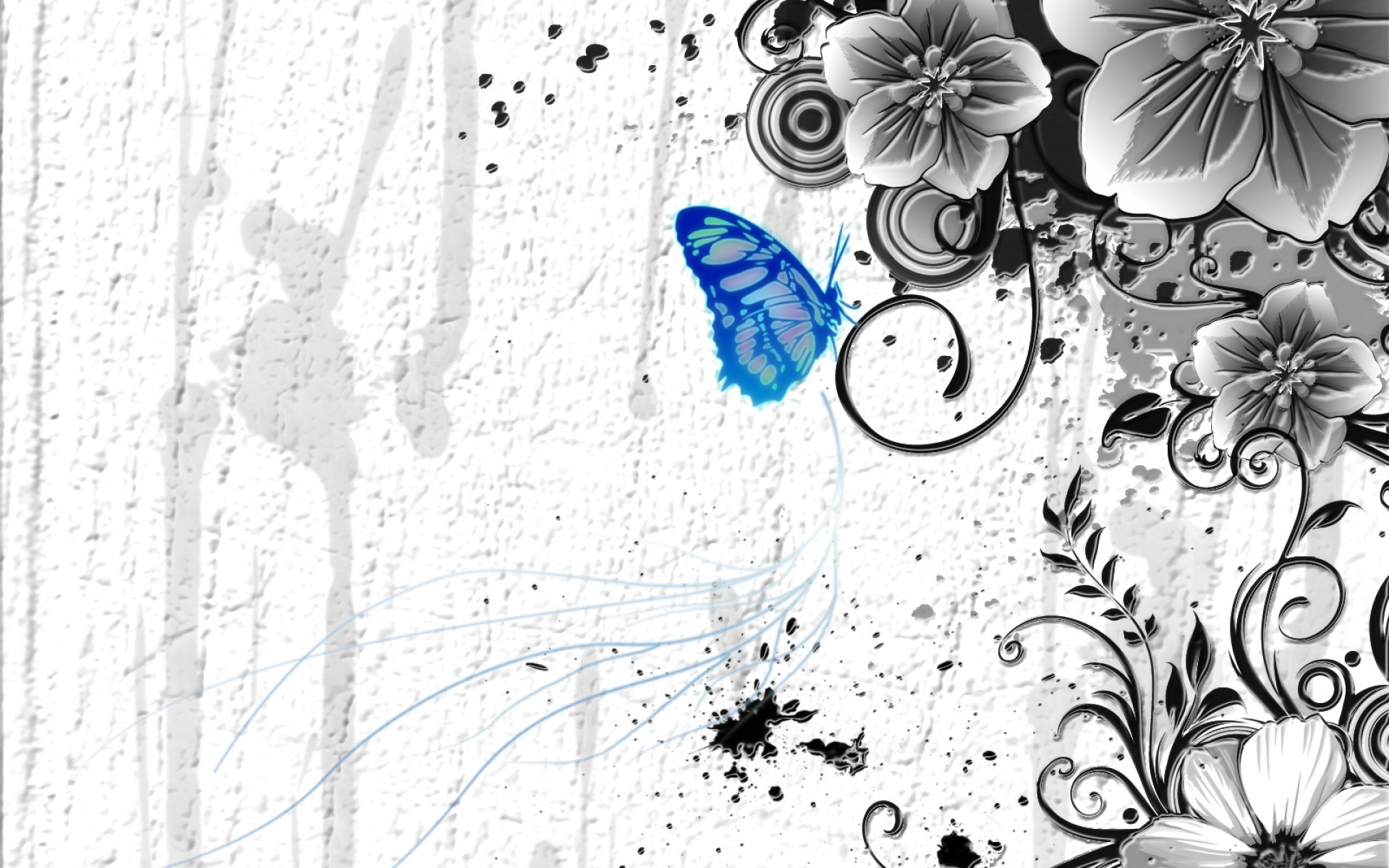 Light Blue Butterfly, Black and White Flower Wallpaper