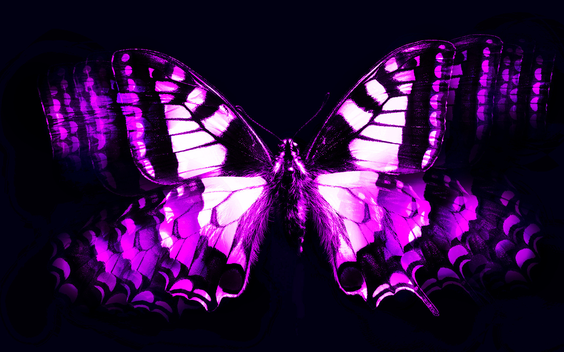 … Abstract Wallpaper Purple Butterfly Wallpaper Mobile for HD .