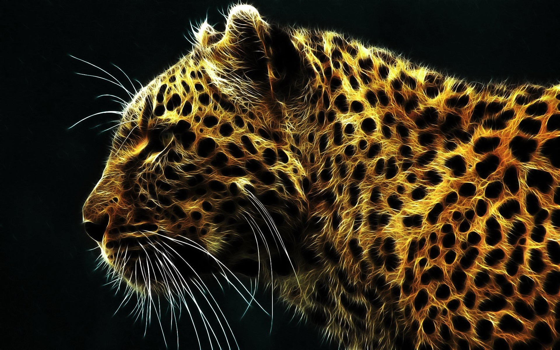 HD Wallpaper | Background ID:66550. Animal Leopard