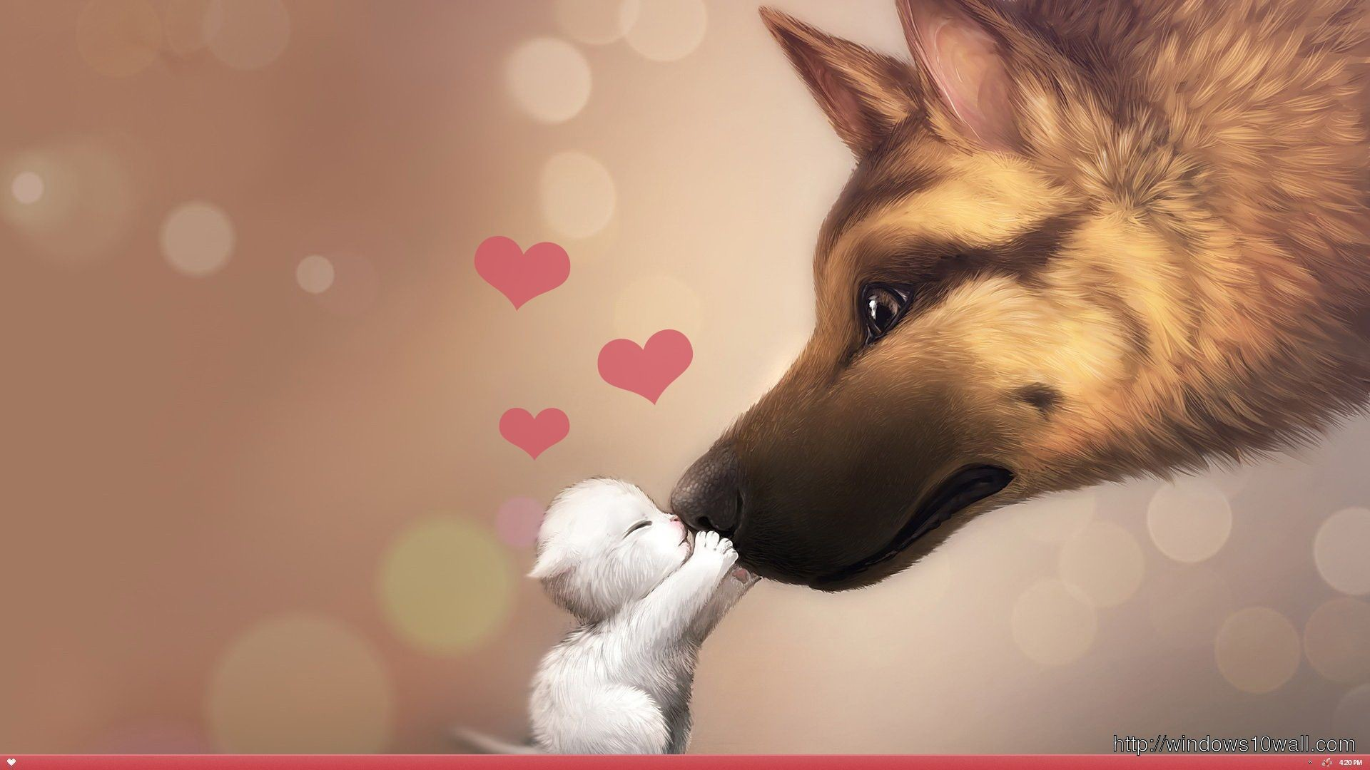 Valentines Day Cat And Dog Love Hd Wallpaper