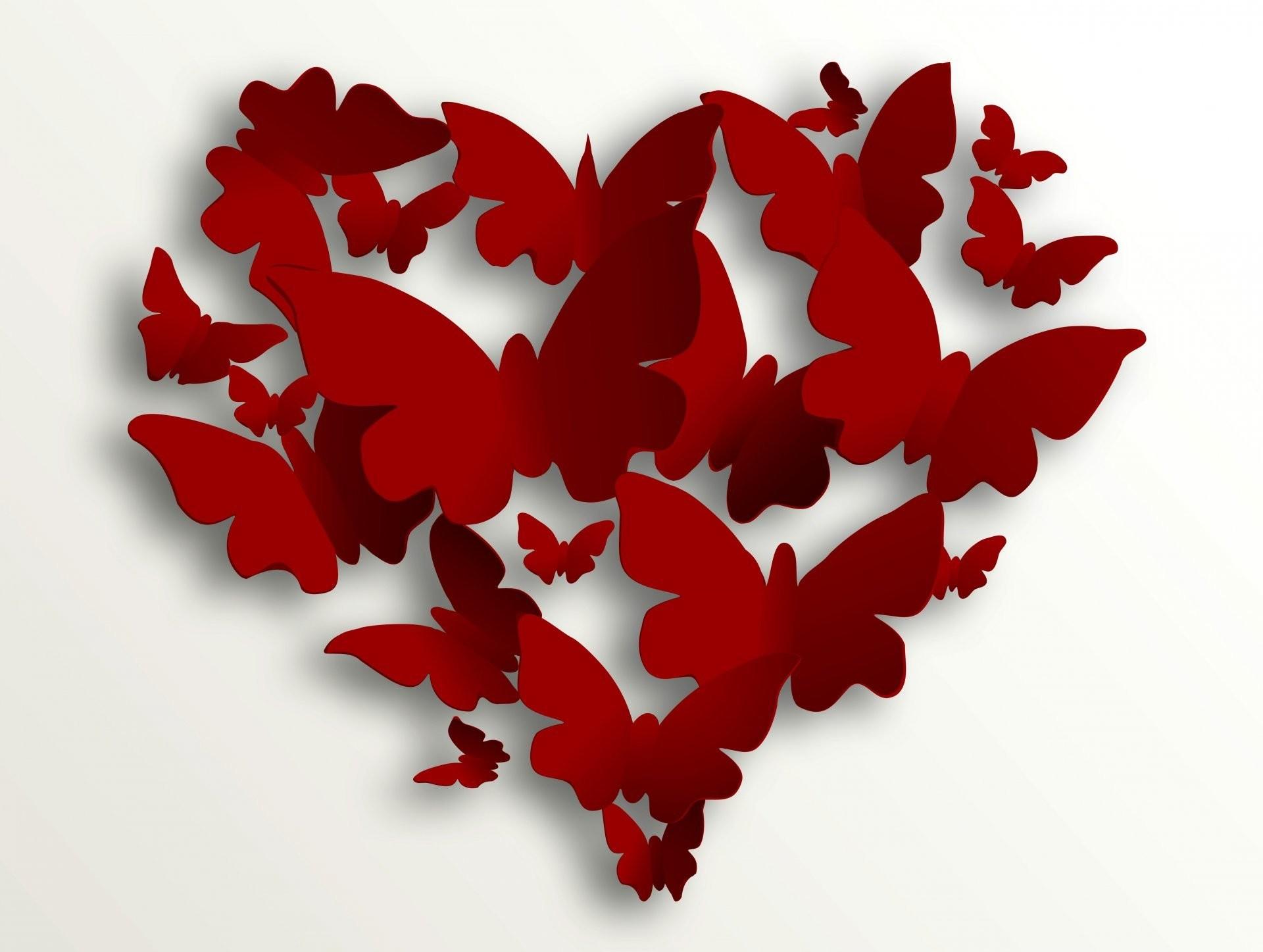 valentine's day love heart romantic heart butterfly