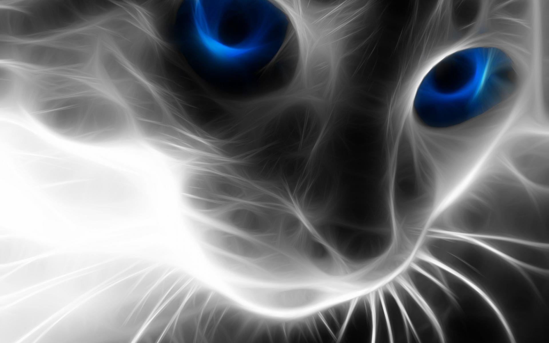 Cat Background 238077