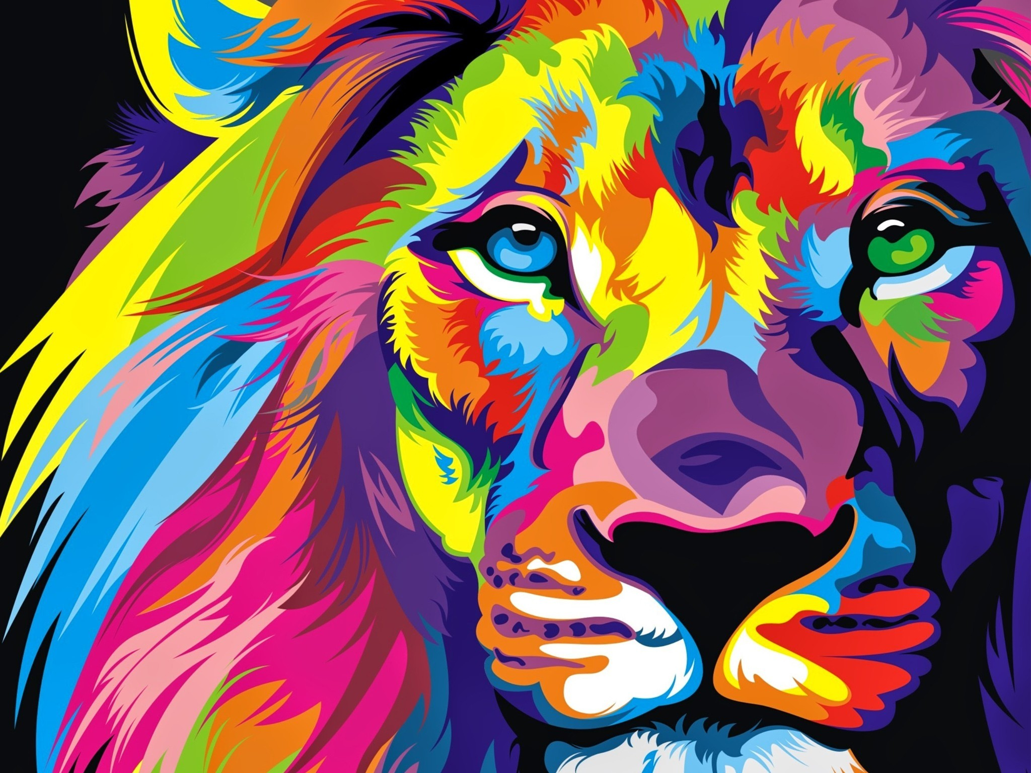 lion colorful artwork wallpapers | hd wallpapers