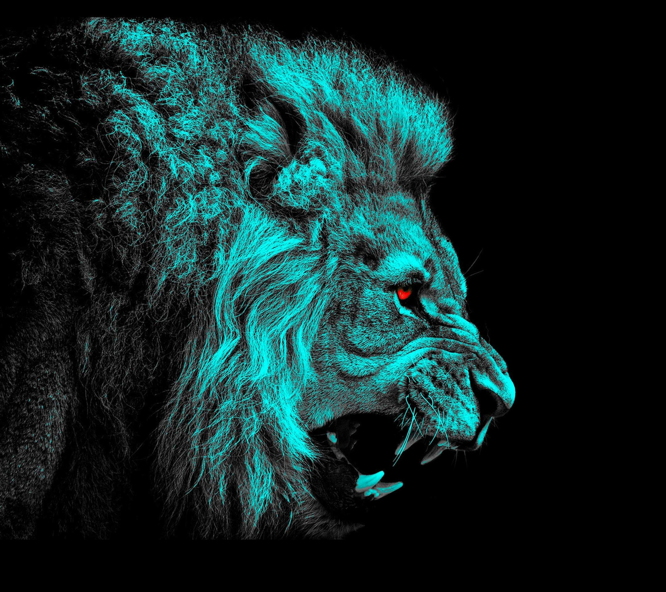 Angry Lion – The iPhone Wallpapers