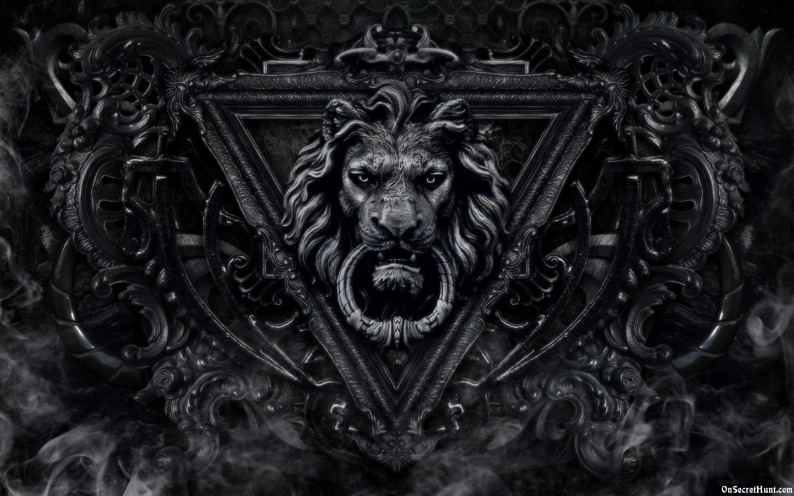 Lion Black And White Wallpaper High Resolution