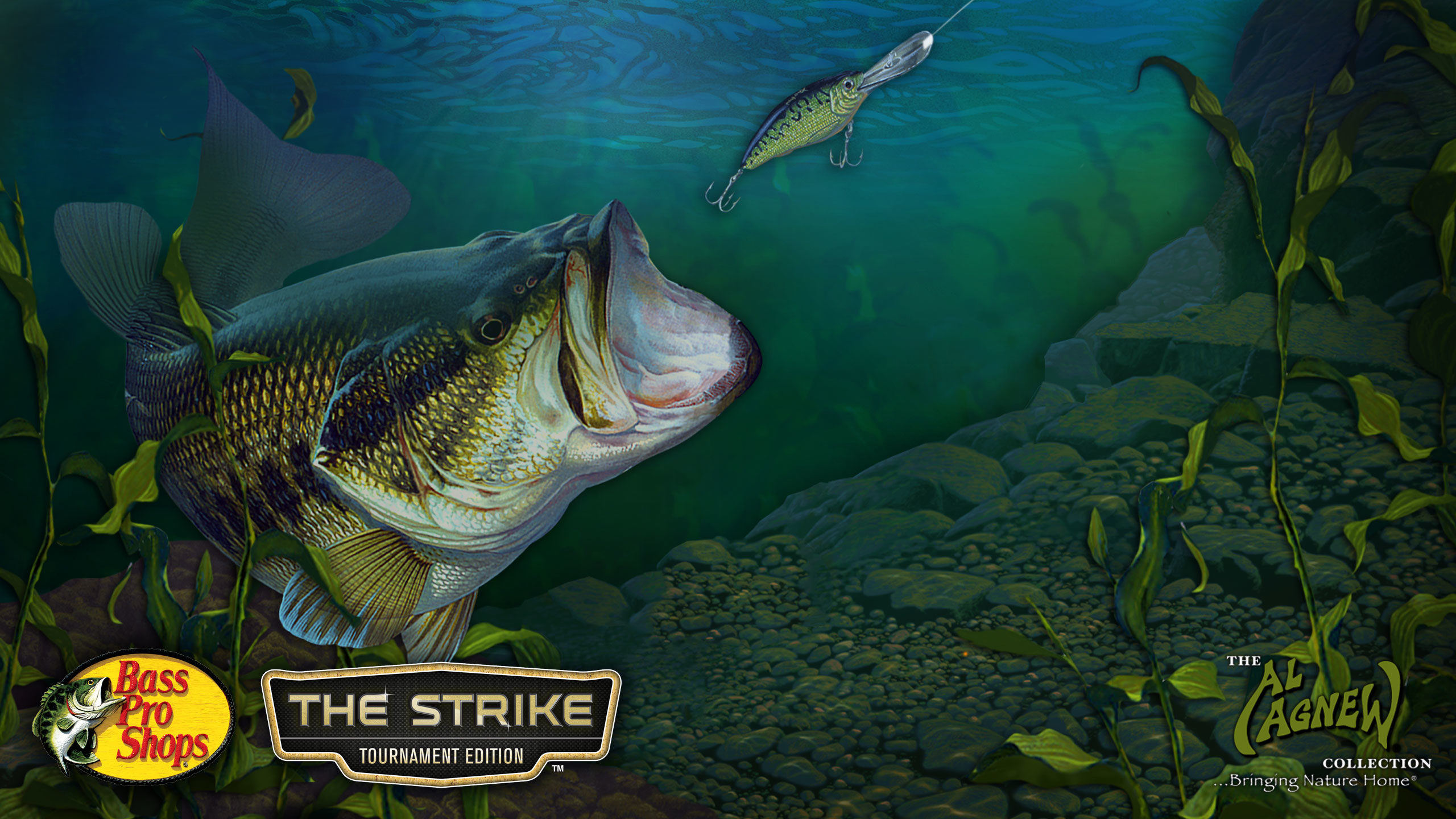 Images For > Largemouth Bass Wallpaper Hd