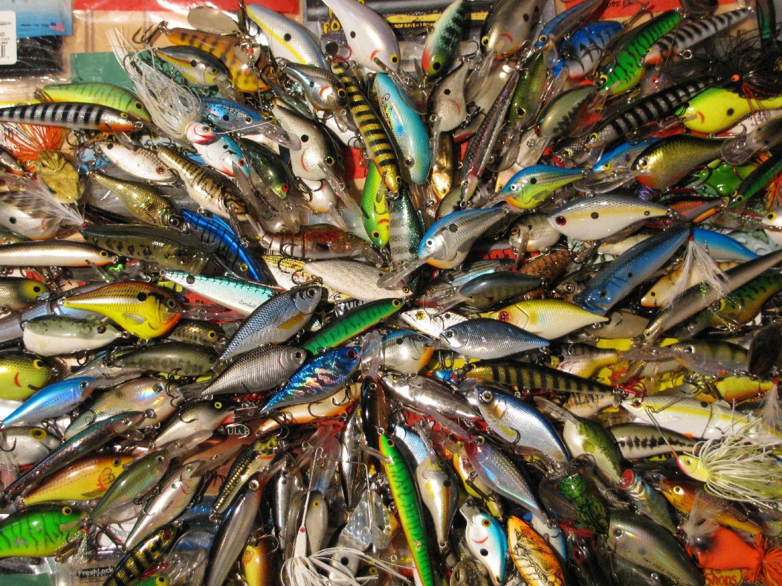 42 Largemouth Bass Wallpaper For Desktop