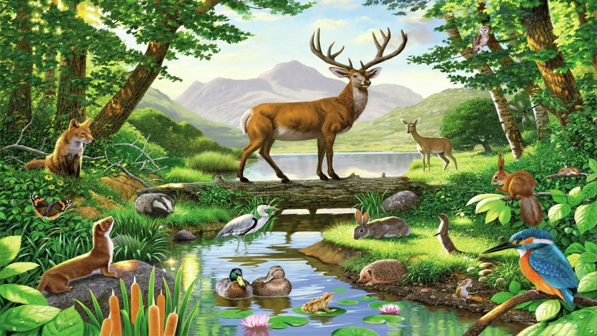 Forest Animals 745671 …