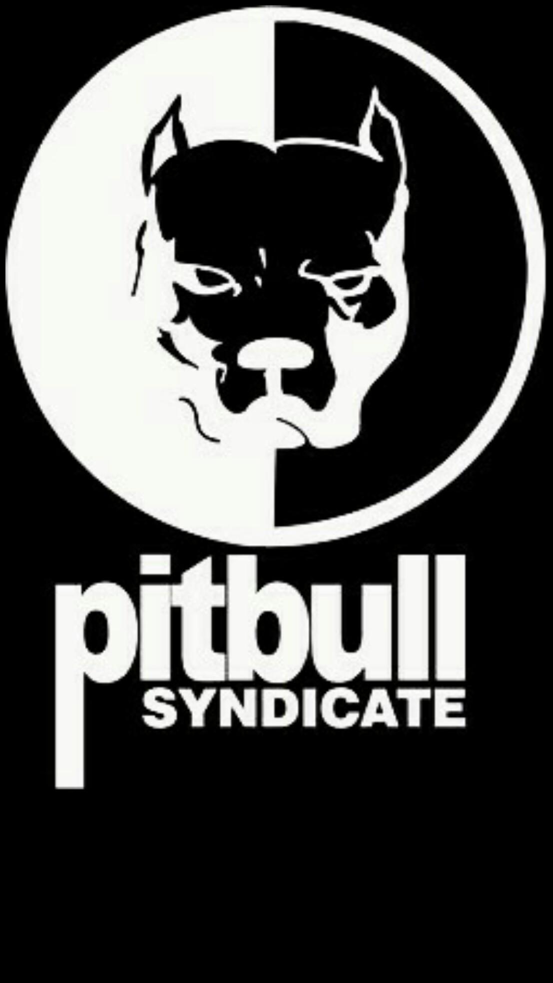 #pitbull #black #wallpaper #android #iphone