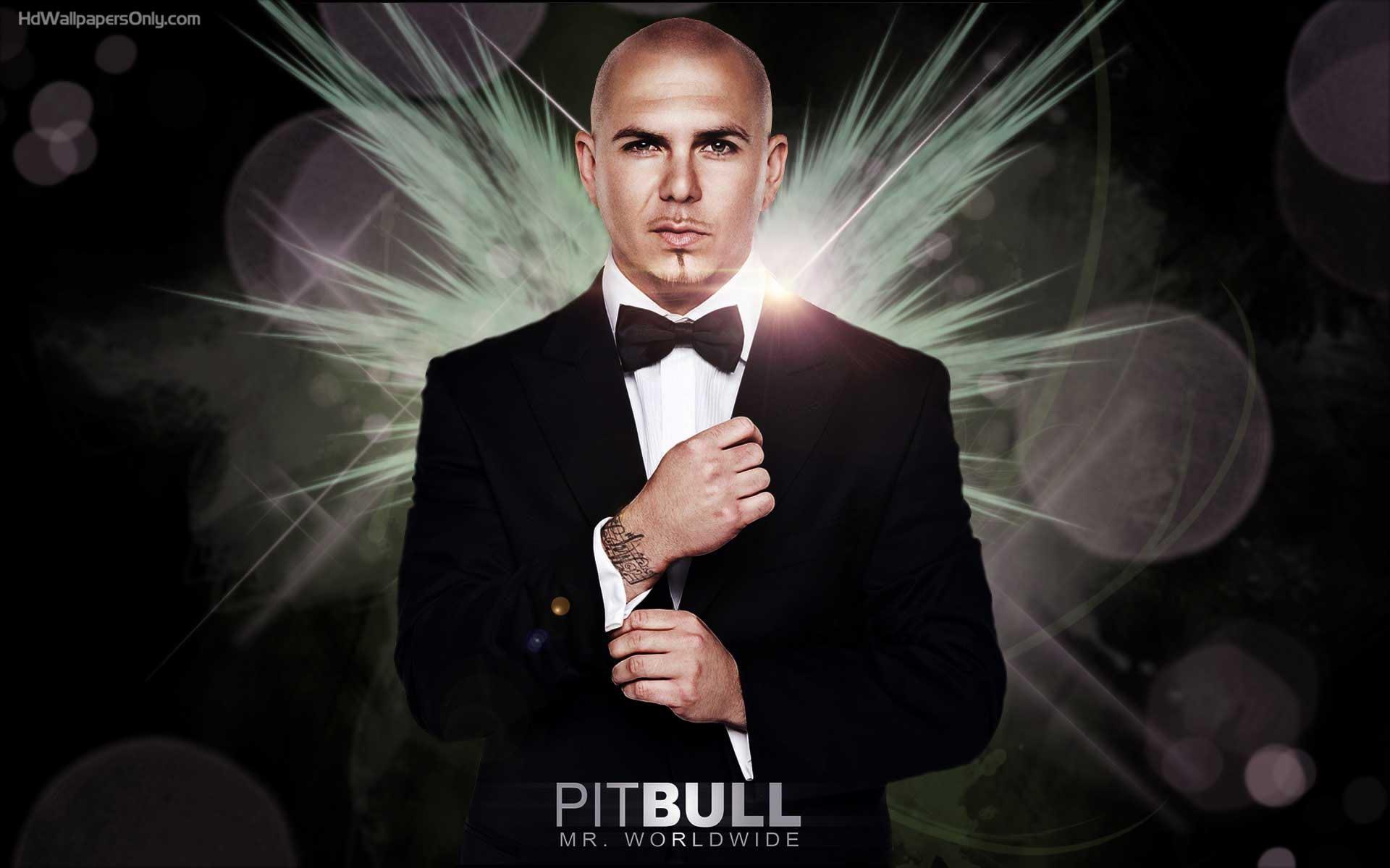 Pitbull HD Images 5 | Pitbull HD Images | Pinterest | Hd images and Pitbull