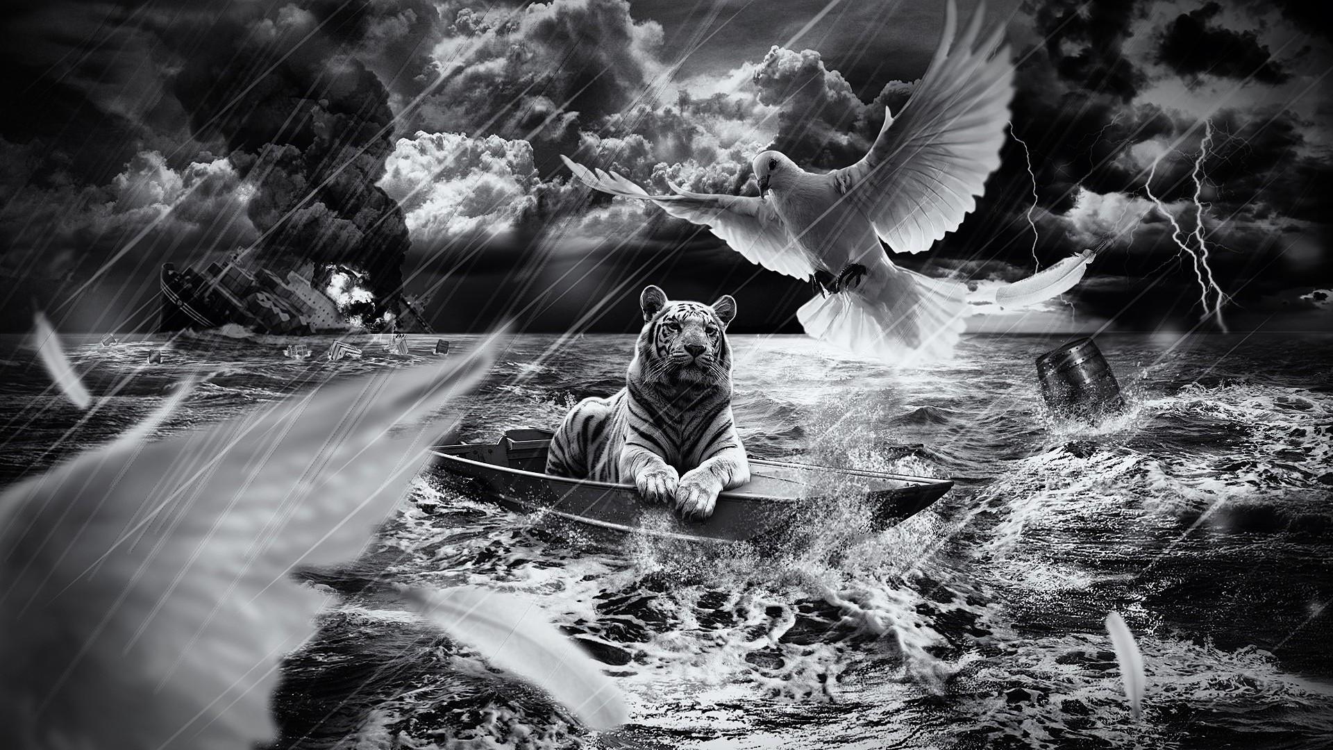 Preview wallpaper tiger, boat, sailing, sky, light 1920×1080