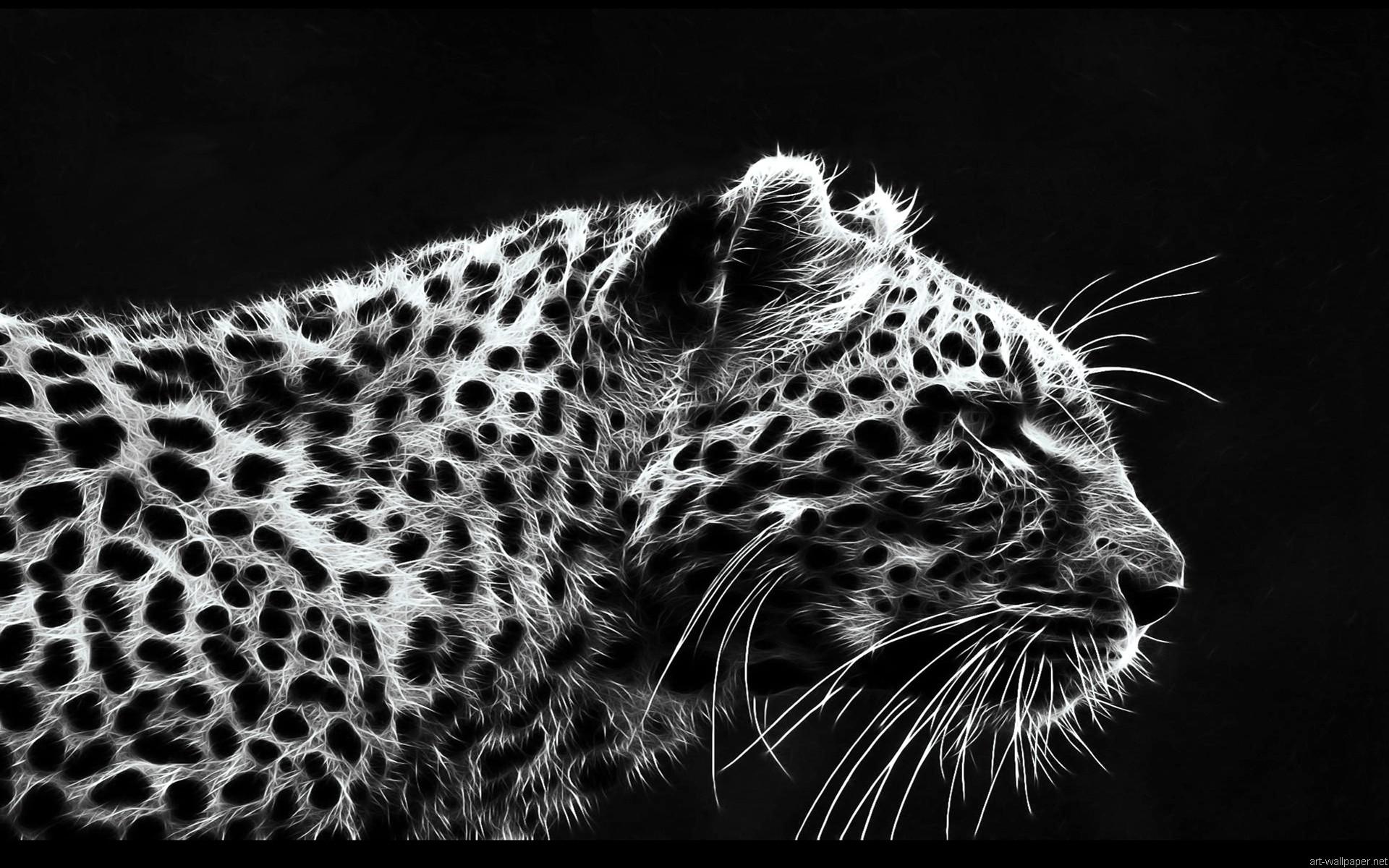 Leopard wallpaper jpg x desktop wallpaper 152286
