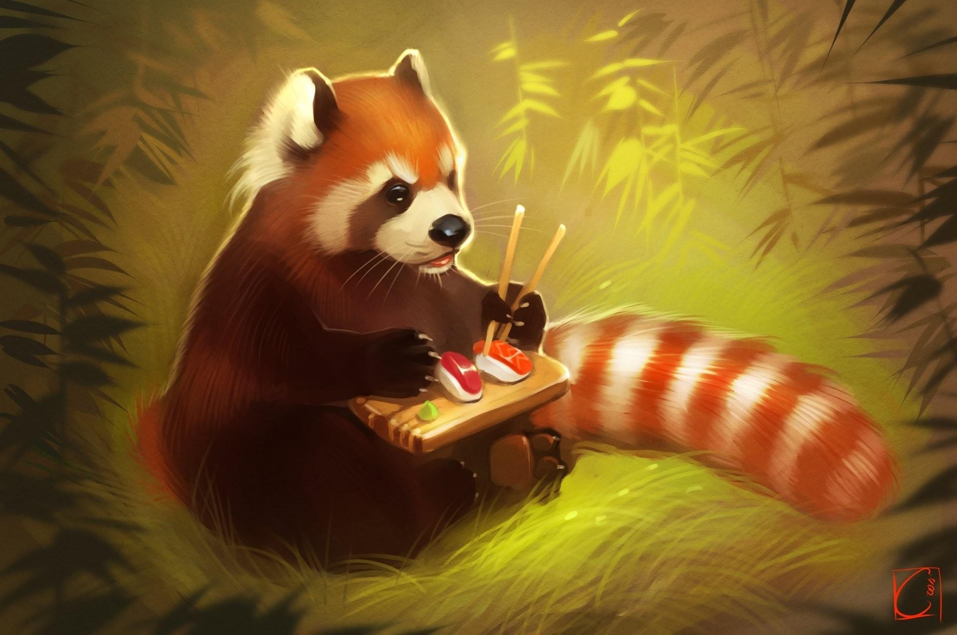 red panda art panda land bear