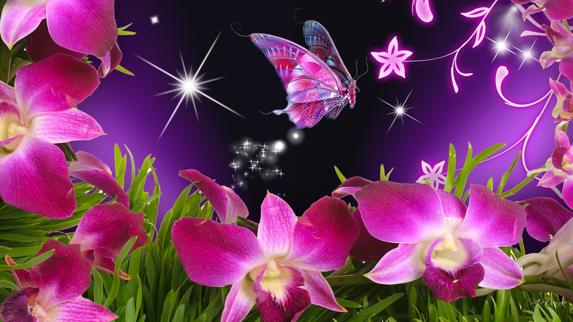 Flowers For > Beautiful Flowers And Butterflies Wallpapers | wallpapers,themes,ect.  | Pinterest | Butterfly wallpaper, Wallpaper and Illustrations