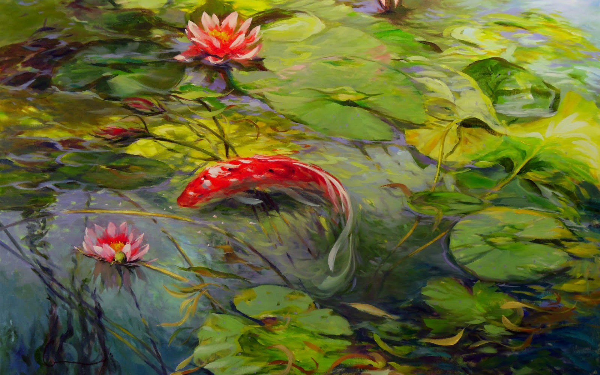 Lovely Koi Lily Pond wallpapers | Lovely Koi Lily Pond stock photos
