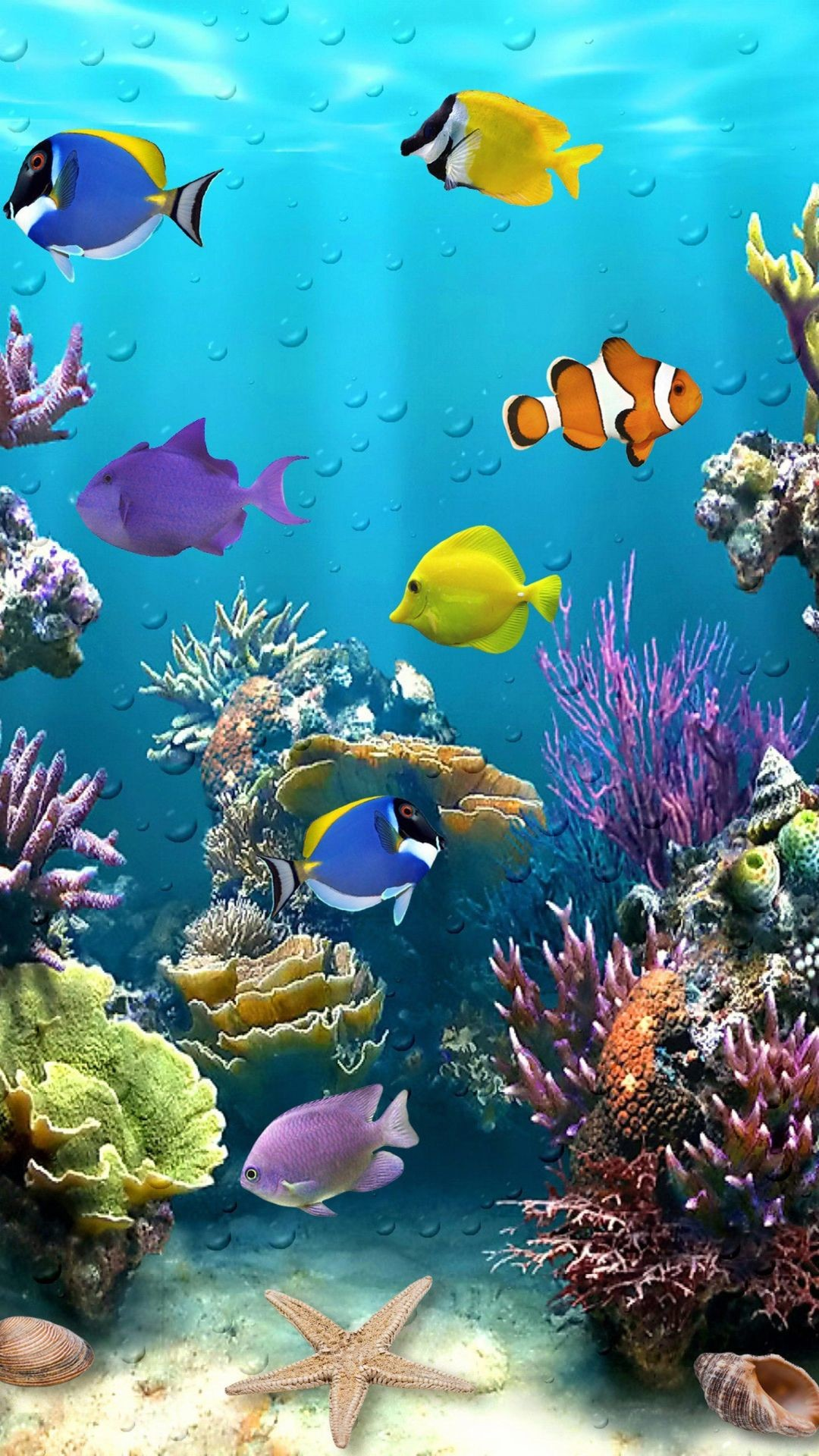 Fish Live Wallpaper, Picture, Image