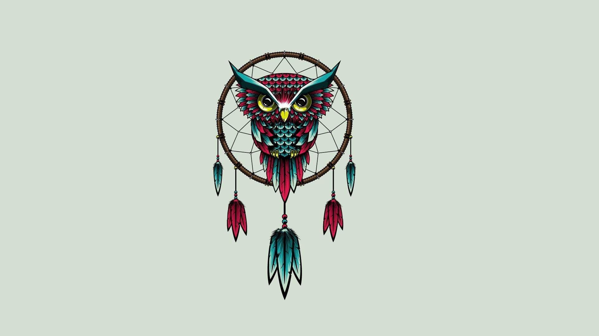 Cute Owl Wallpaper HD