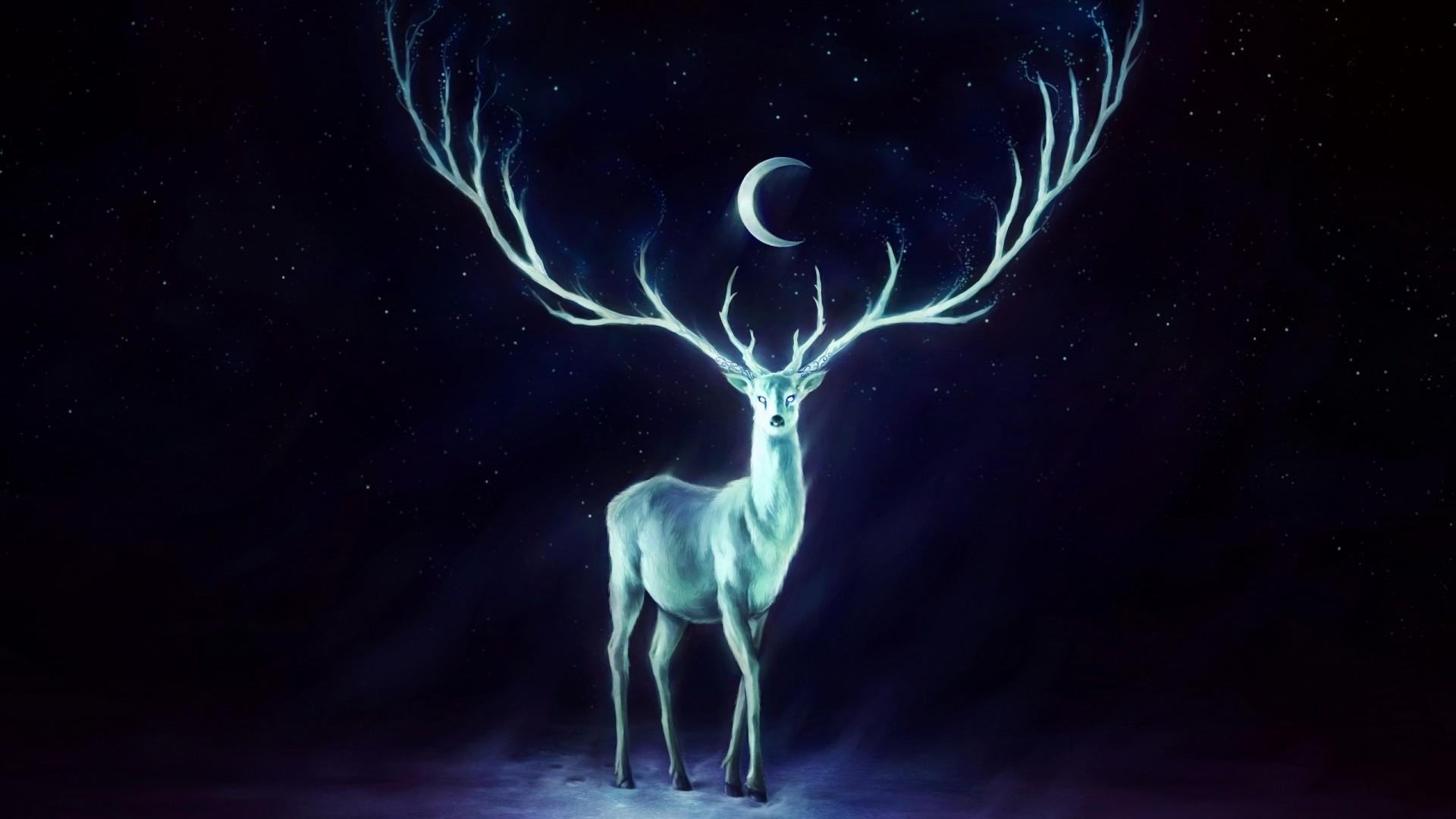 Preview wallpaper deer, horns, moon, stars 1920×1080