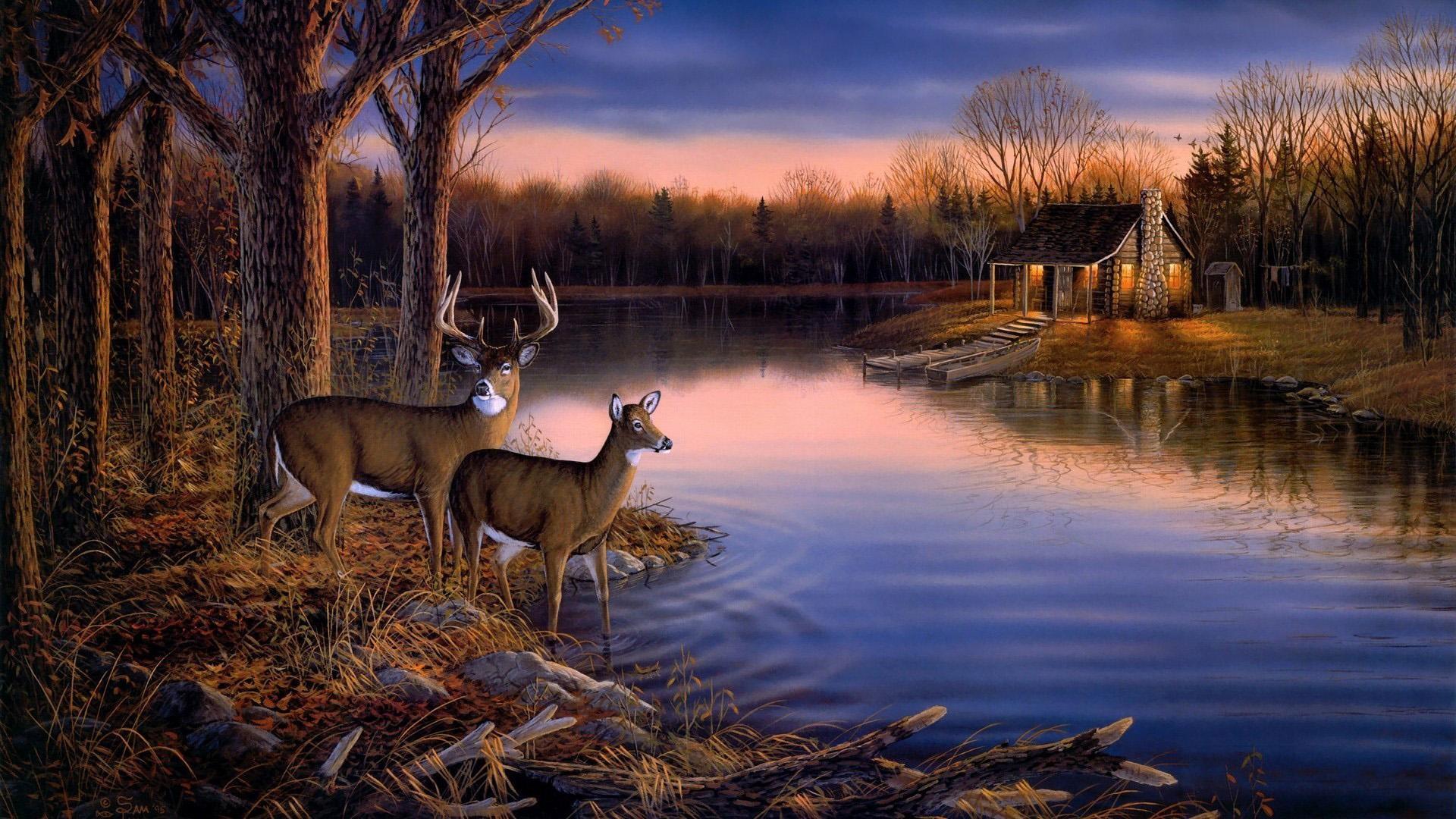 Deer Hunting Wallpaper Border | … ,landscape wallpaper Picture  1080p hd wallpaper