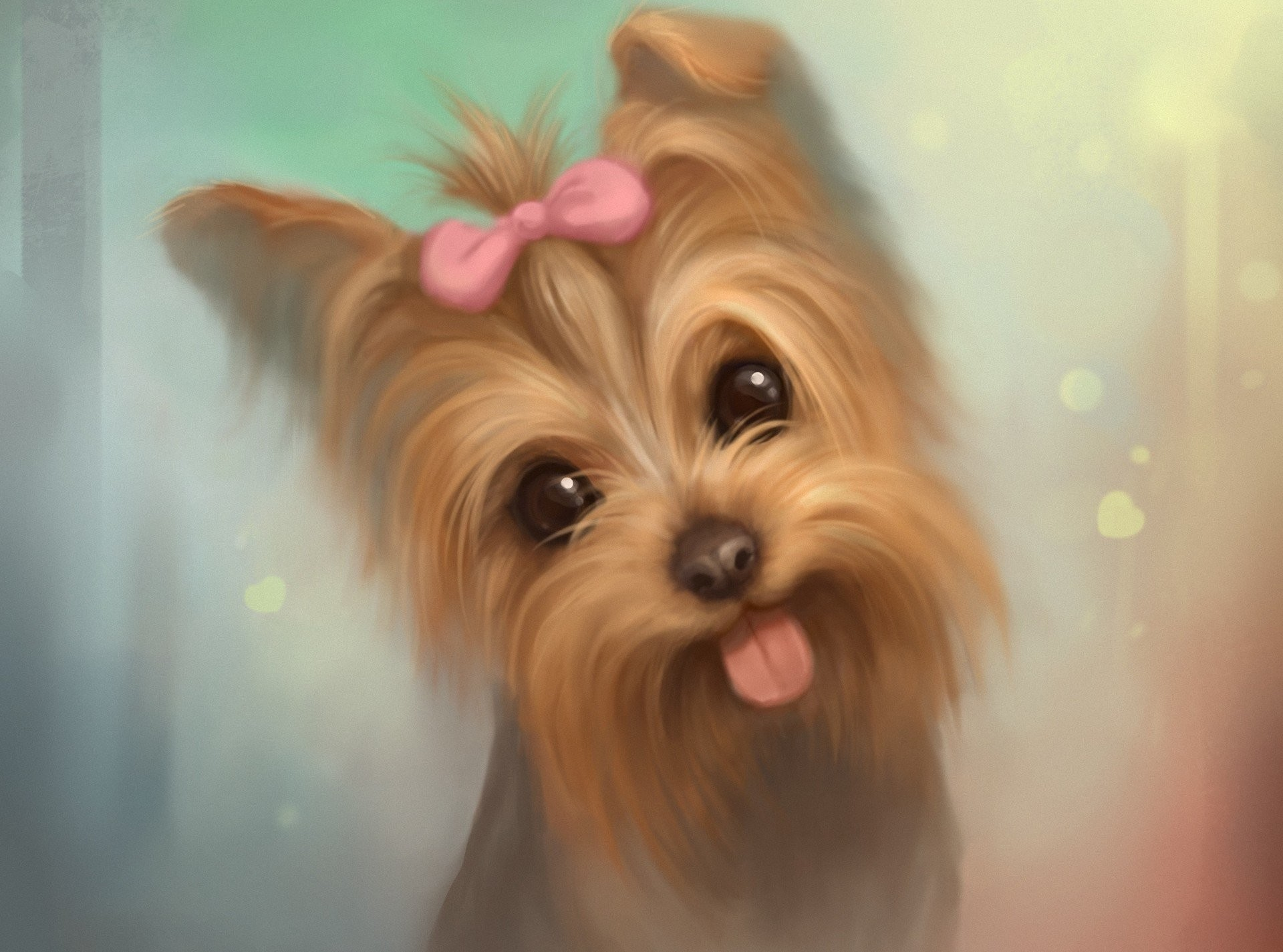 L~B~J~ images Cute Yorkie Dog HD wallpaper and background photos