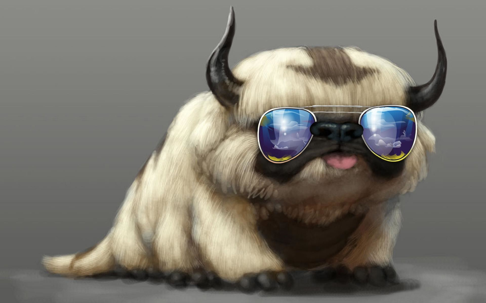 cool cat wallpapers for computer – imageswall.