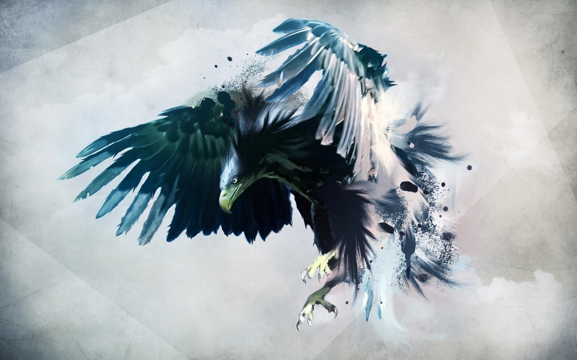 63 Bald Eagle
