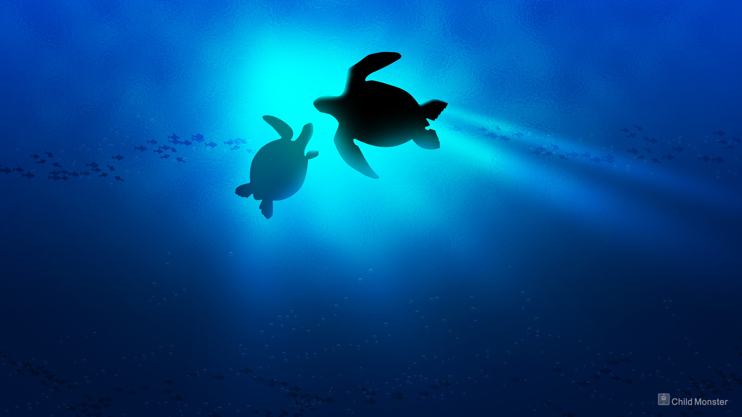 Baby Sea Turtle Wallpaper Desktop Background – Mekamak