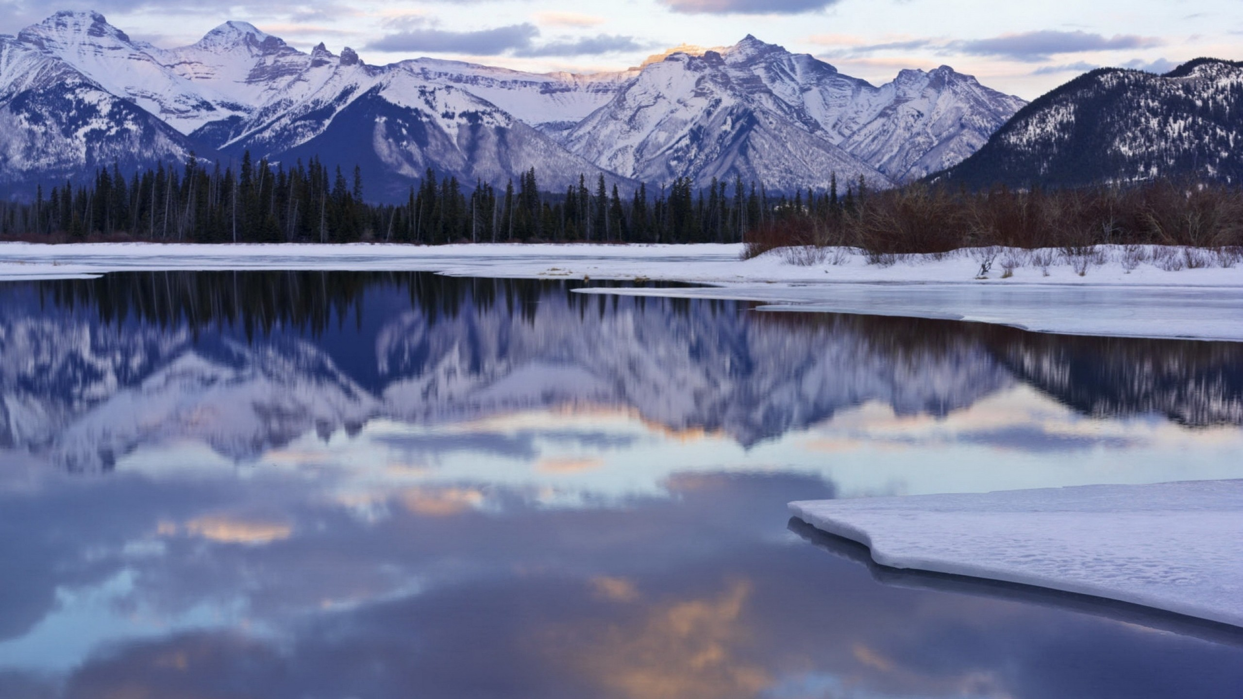 Download Wallpaper Ice, Water, Cold, Mountains … Ice Wolf  Wallpaper