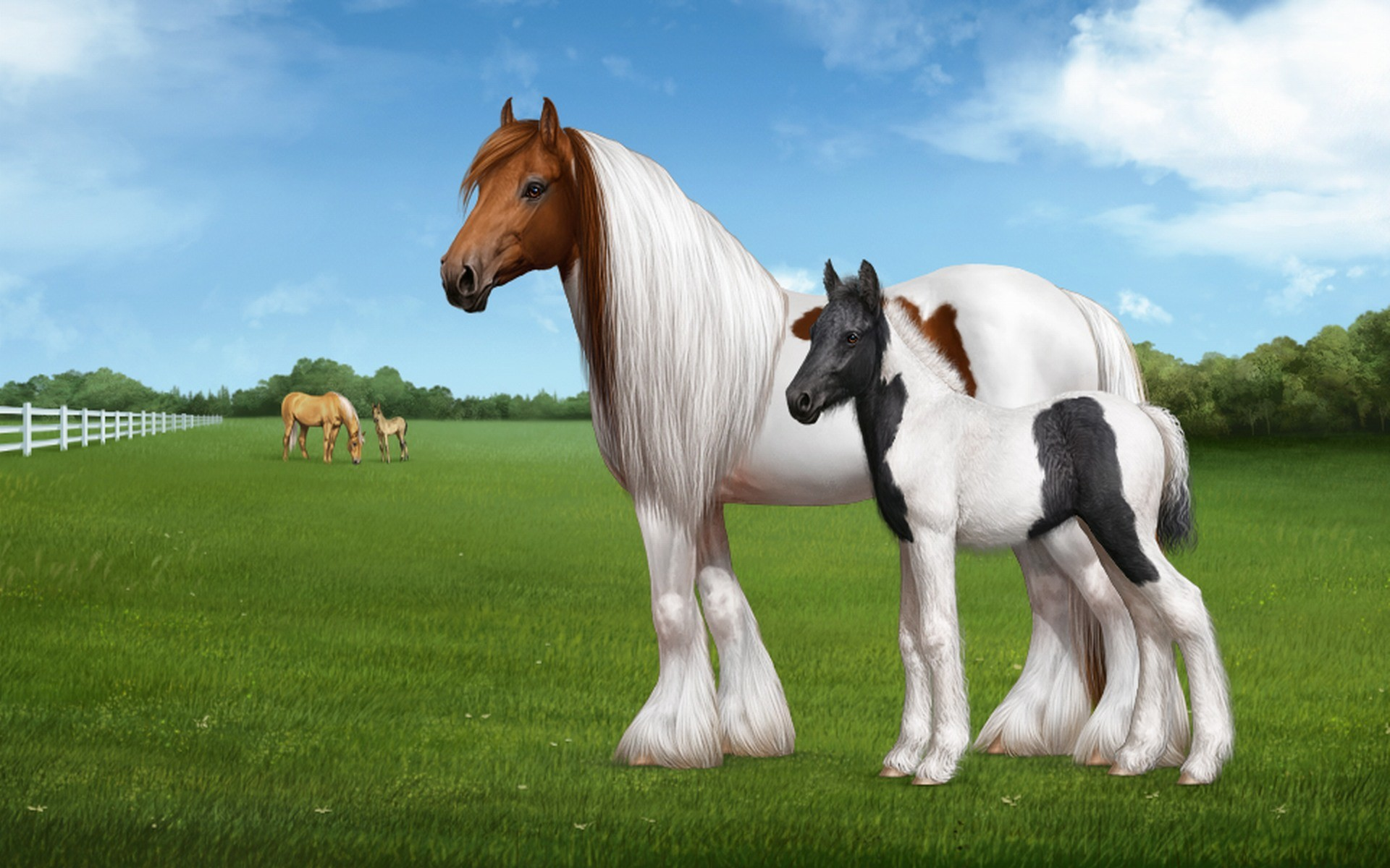 Images Of Horse Wallpapers Wallpapers) – Adorable Wallpapers