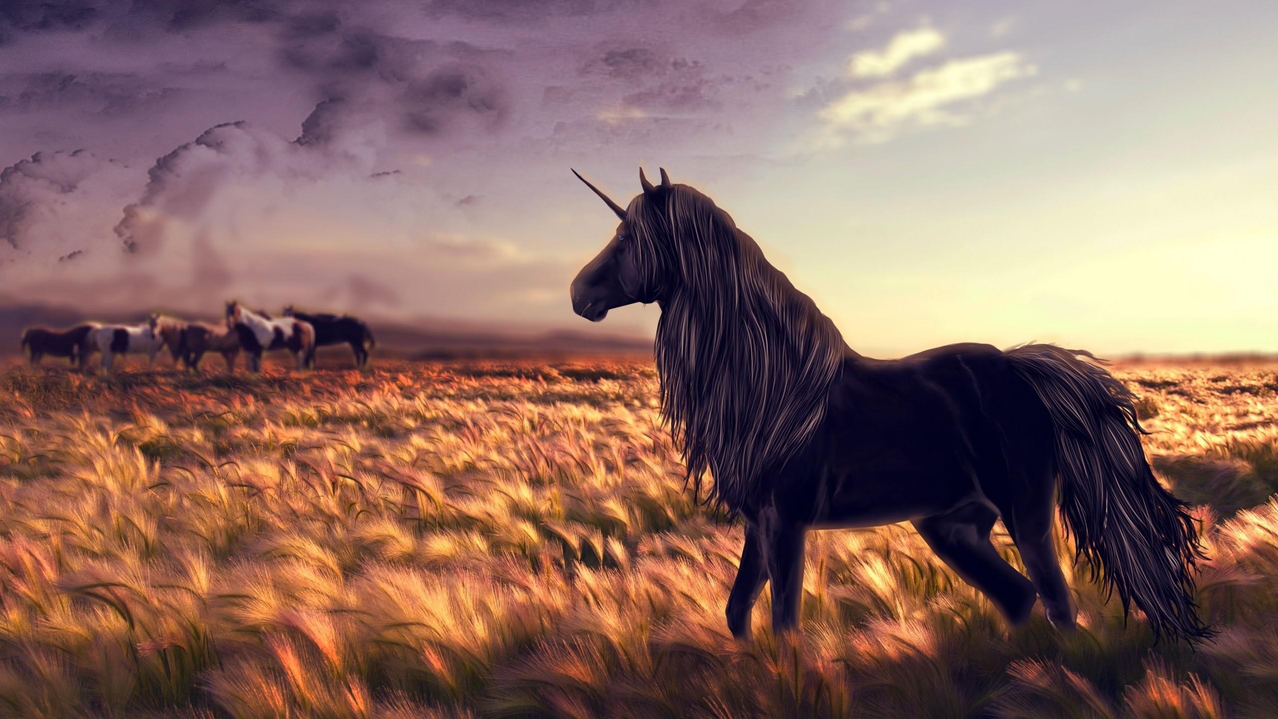 Preview wallpaper horse, unicorn, golf, art, grass, wind 2560×1440