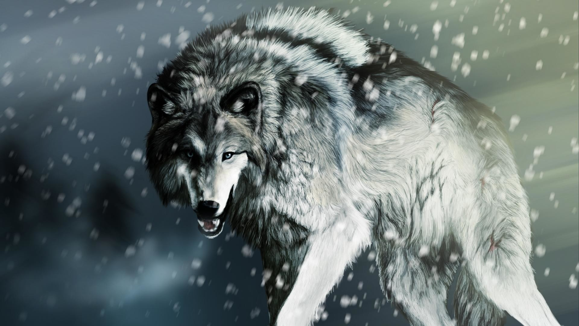 Wallpapers For > Cool Wolf Wallpaper Hd