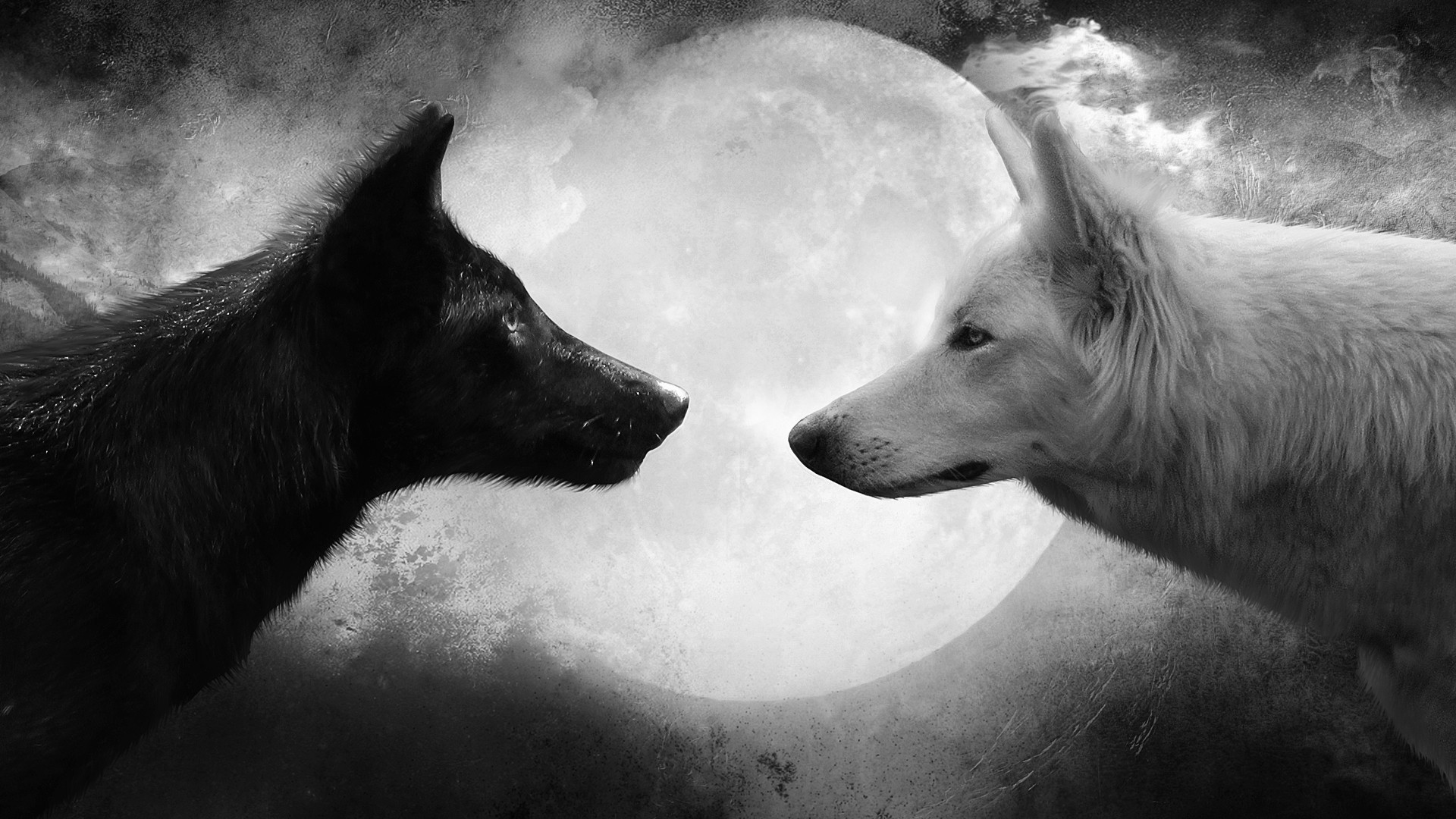 Cool Wolf Wallpapers thumb 1920 321139 …