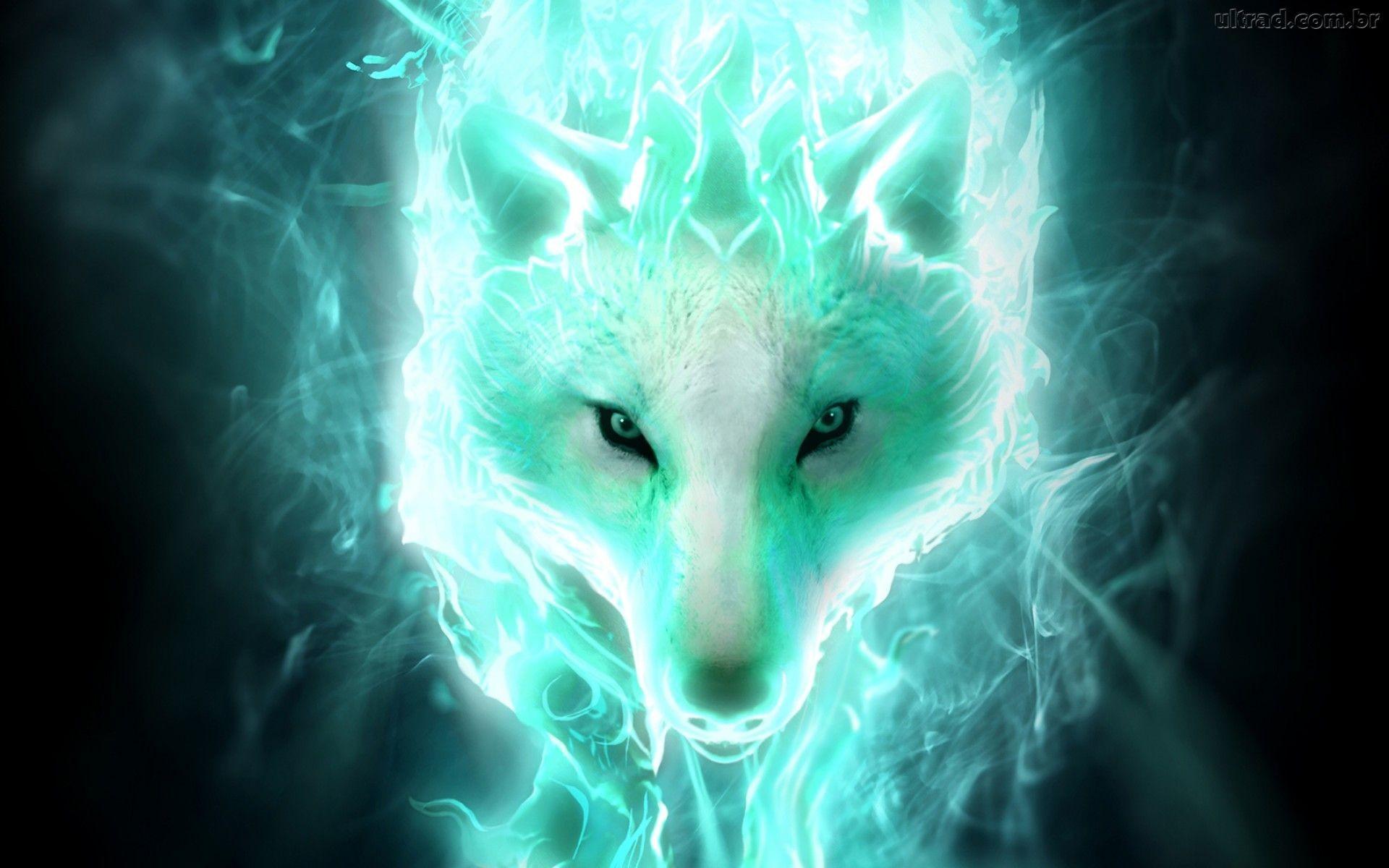 Full HDQ, Wolf, Roman Yepez