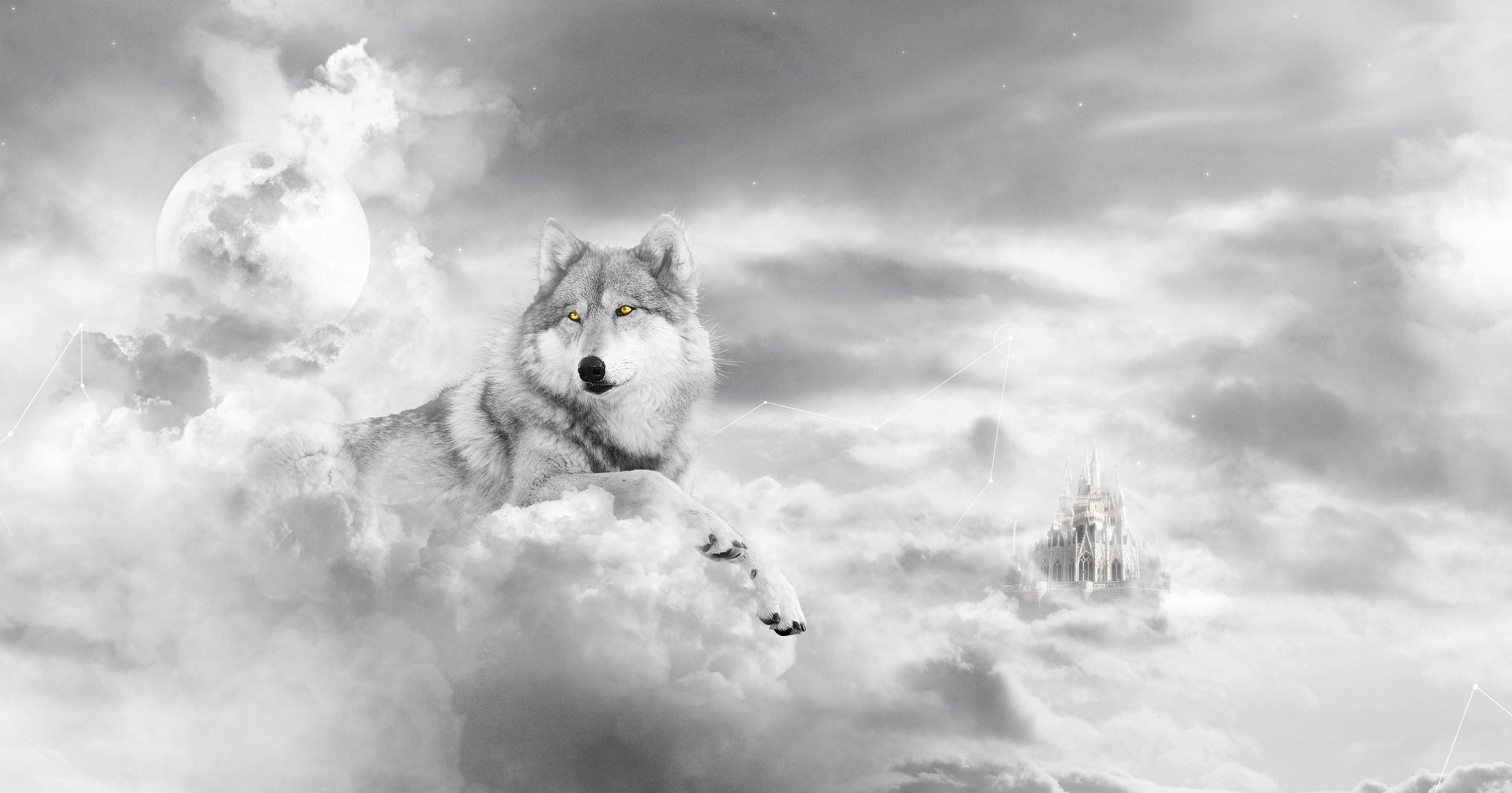 cool wolf in the clouds wallpaper Check more at https://www.finewallpapers