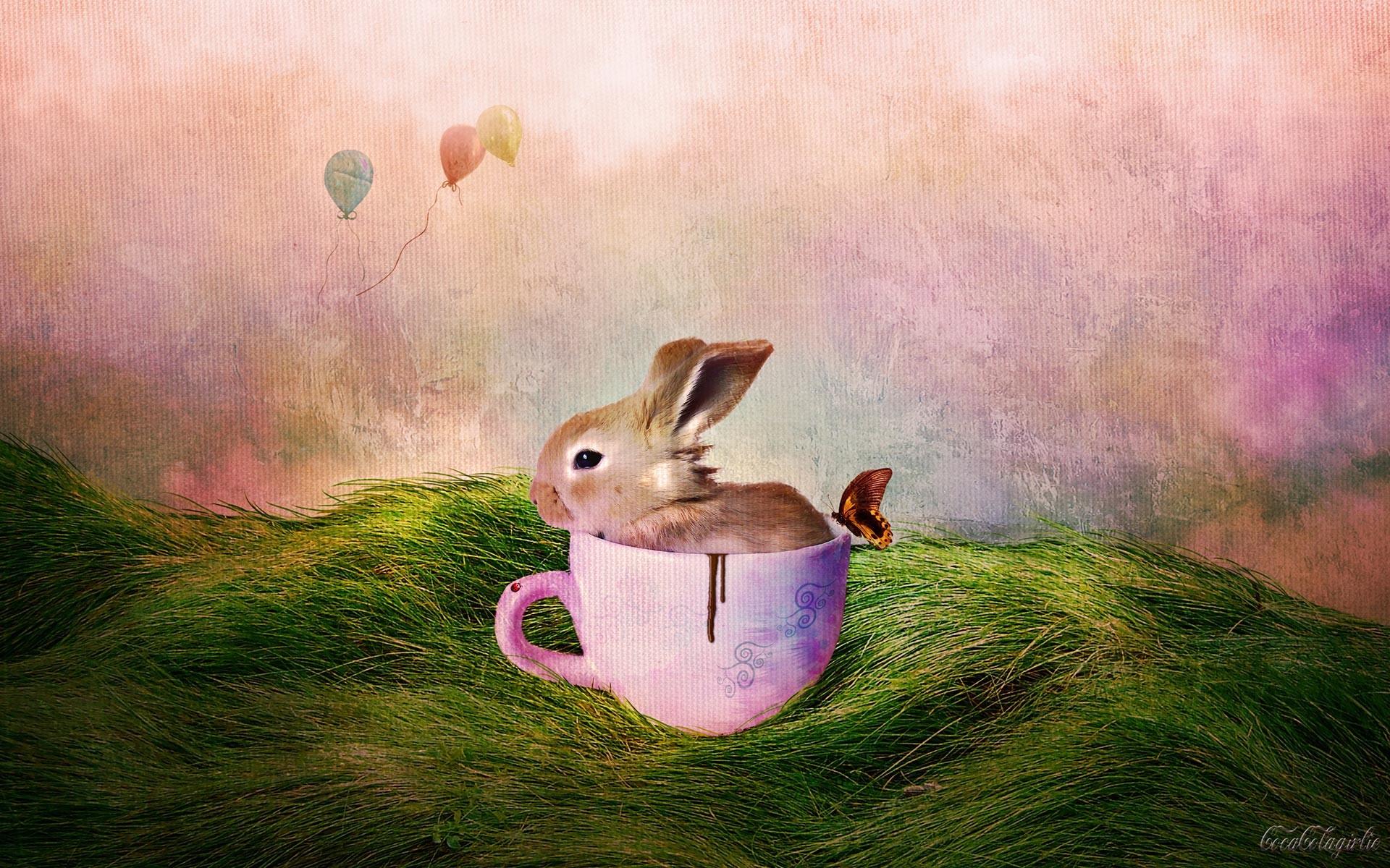 Easter Bunny wallpaper. Resolution: 1920×1200