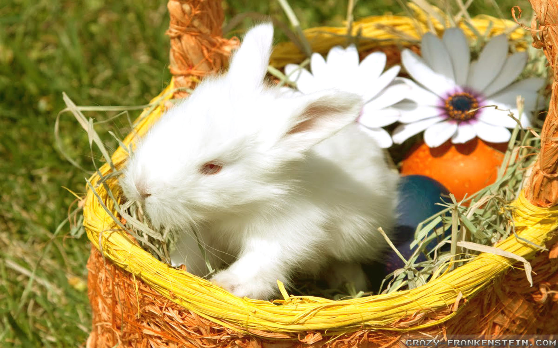 Videos · Home > Wallpapers > Easter wallpapers