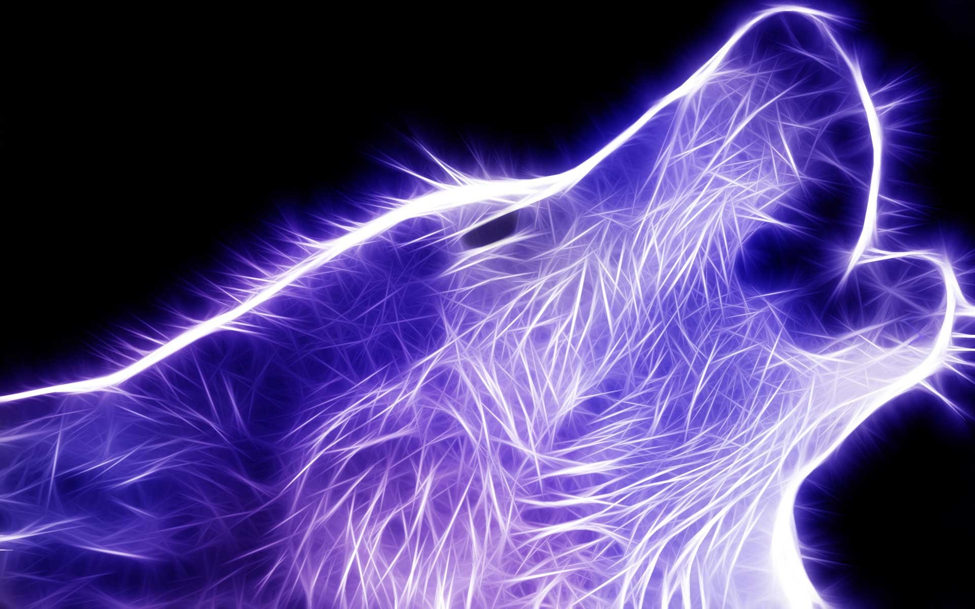 Flaming blue wolf – Other & Animals Background Wallpapers on .