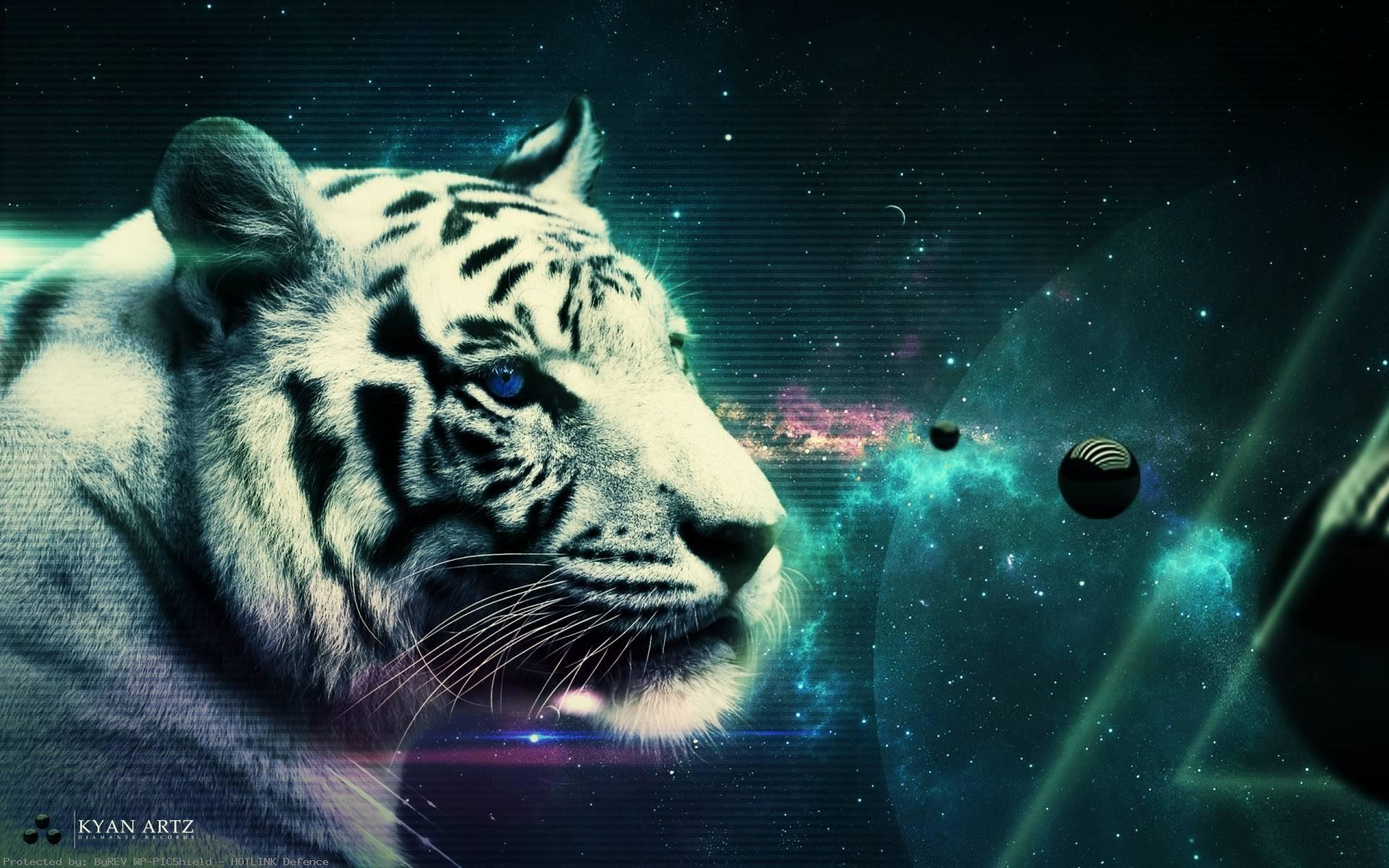 for-computer-Description-Tiger-is-Wallapers-wallpaper-wp38011717