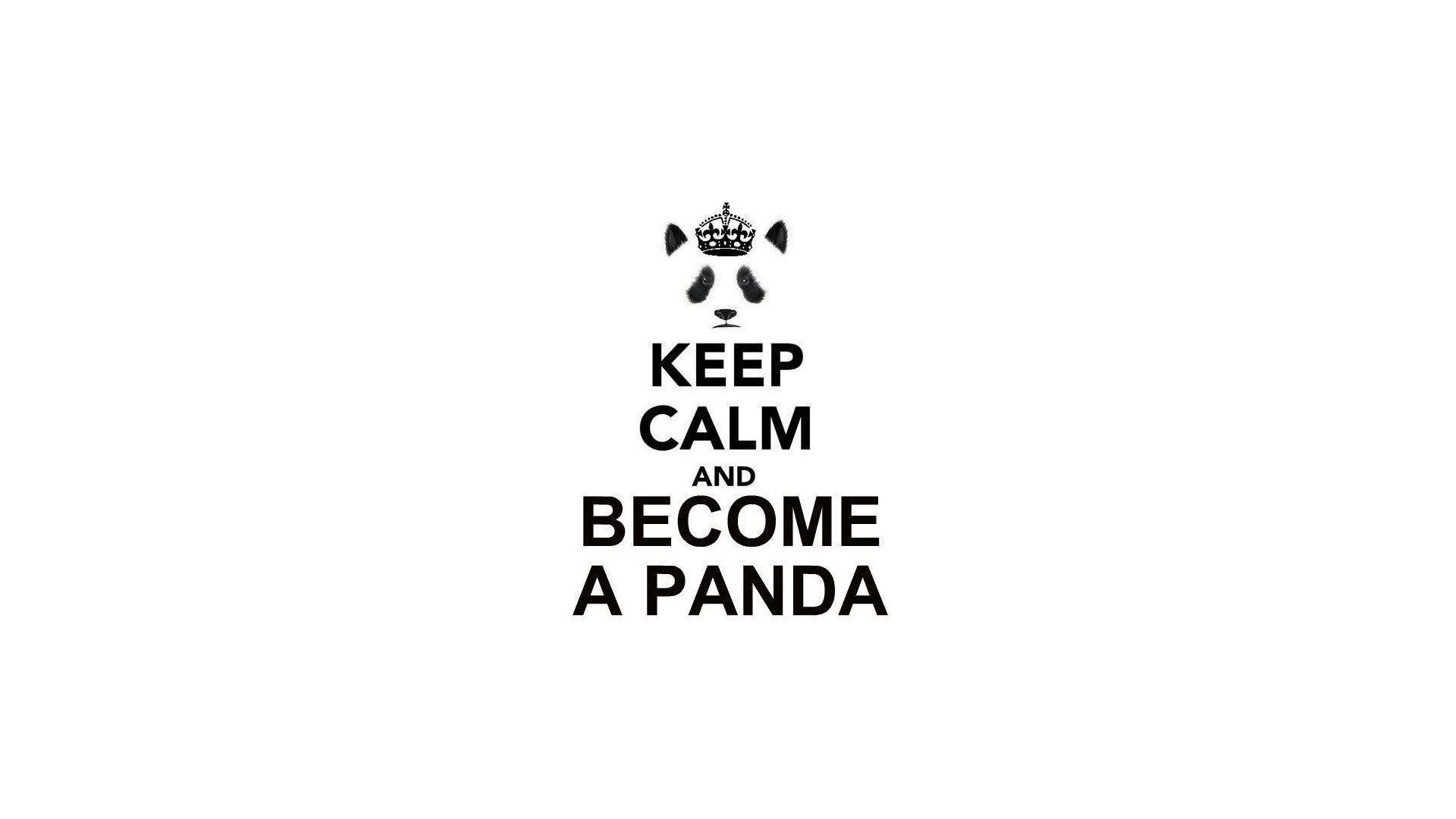 Keep Calm And Panda Bears Simple Background Text White