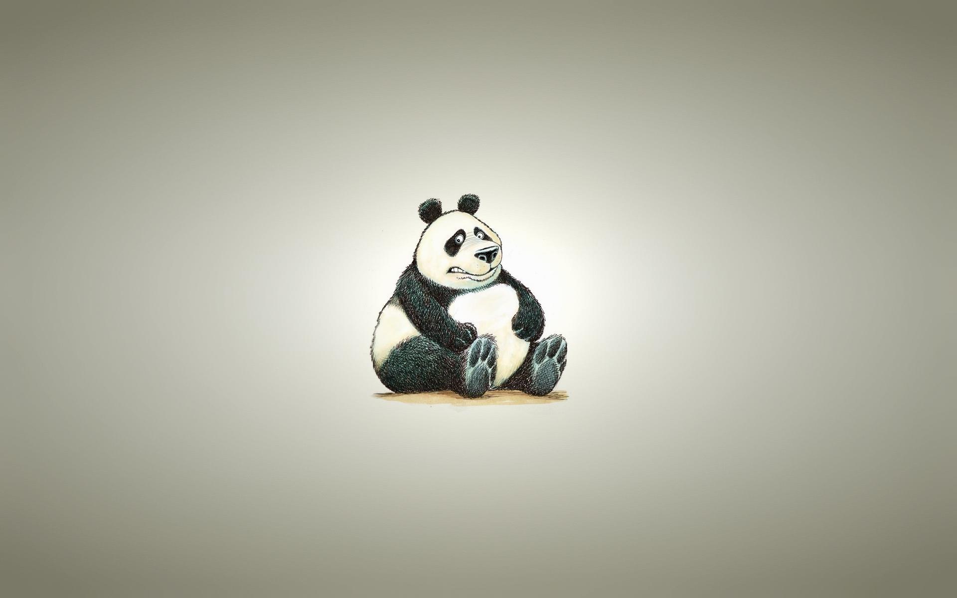 Wallpaper-HD-Fat-Panda-Bear