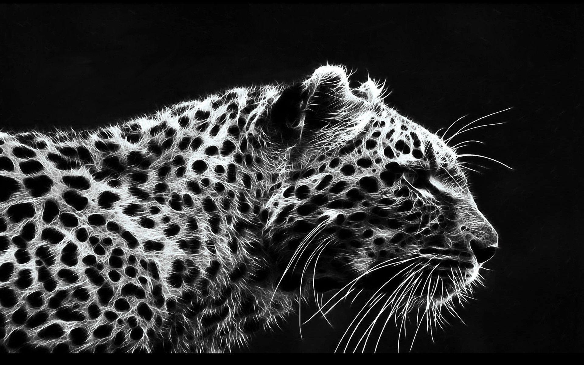 Black Leopard Wallpaper 42087 Full HD Wallpaper Desktop – Res .