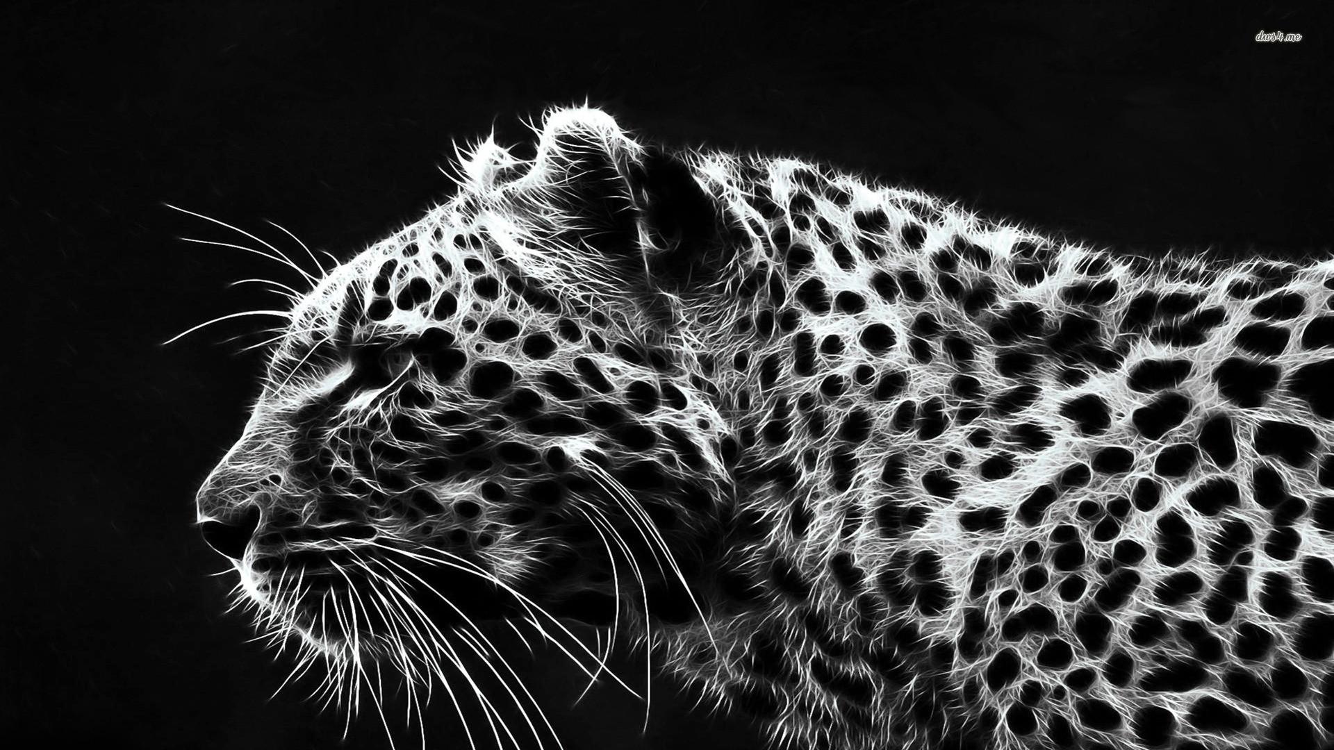 Animais Guepardo Predator (Animal) Animais Big Cat Papel de Parede    Wallpapers Full HD   Pinterest   Wallpaper