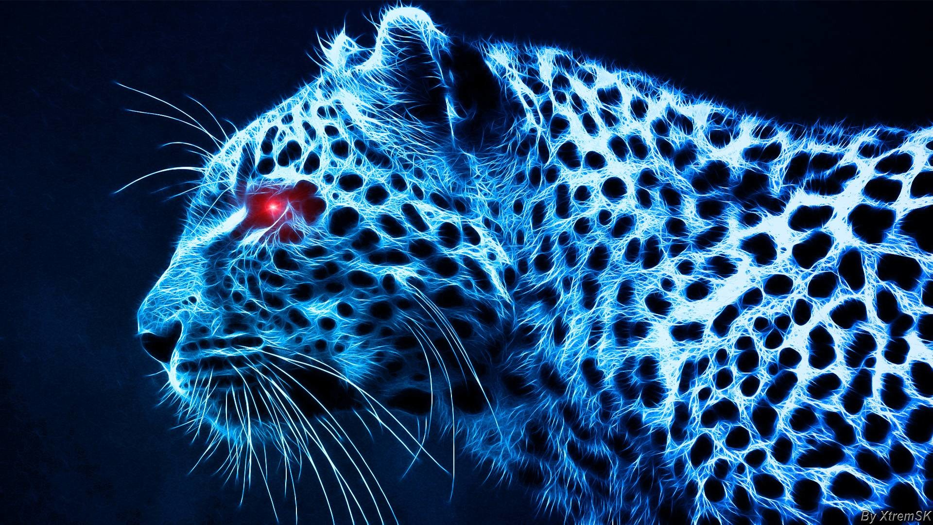 Wallpapers For > Blue Tiger Wallpaper Hd